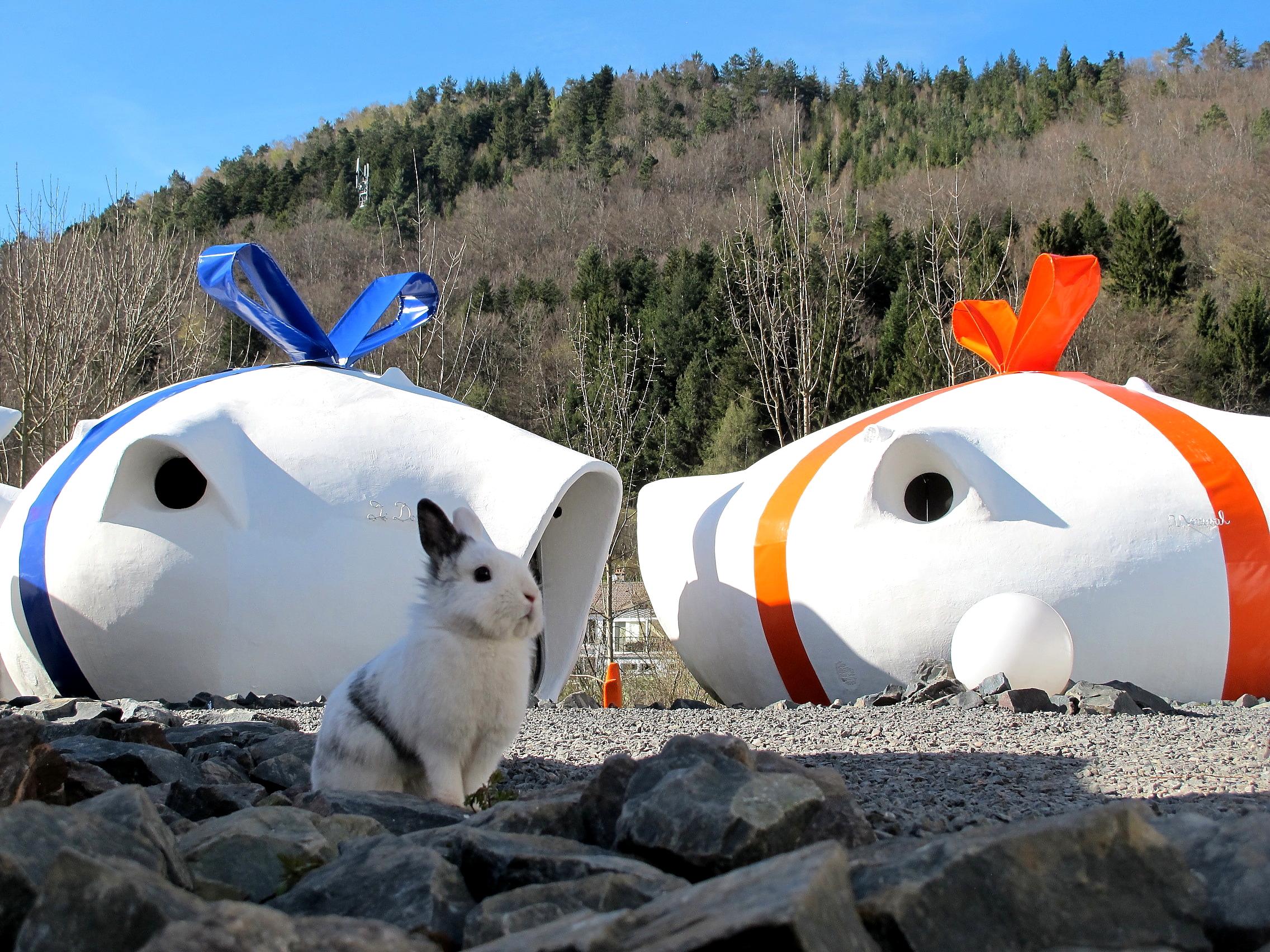 Ostern 2012: Schöne Schleifen verzieren derzeit die Wohn-Eier