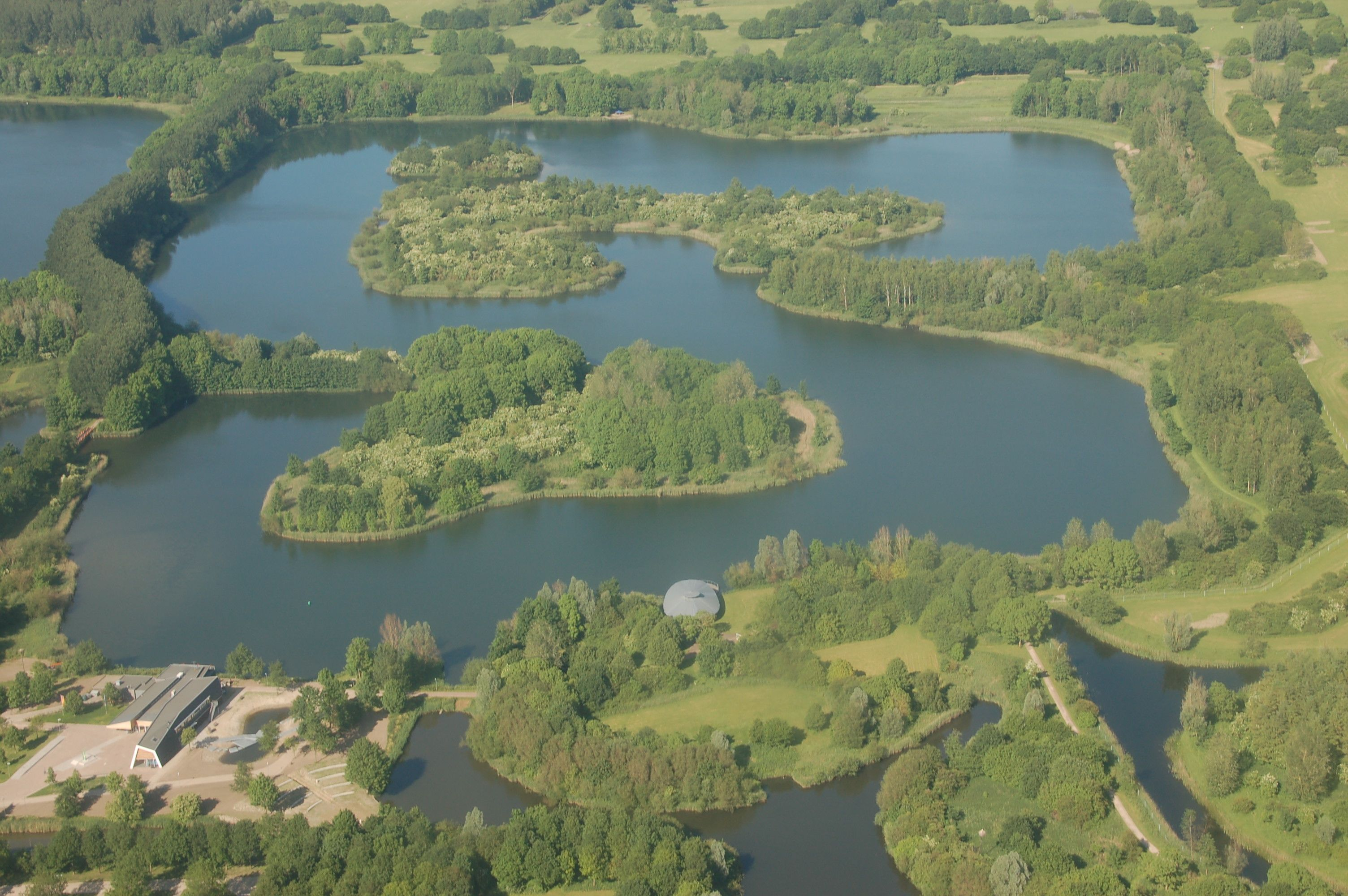 Das Naturschutzgebiet Oostvaardersplassen ist eher ein Unfall: Es ist entstanden, weil der Boden zum Bauen zu sumpfig war