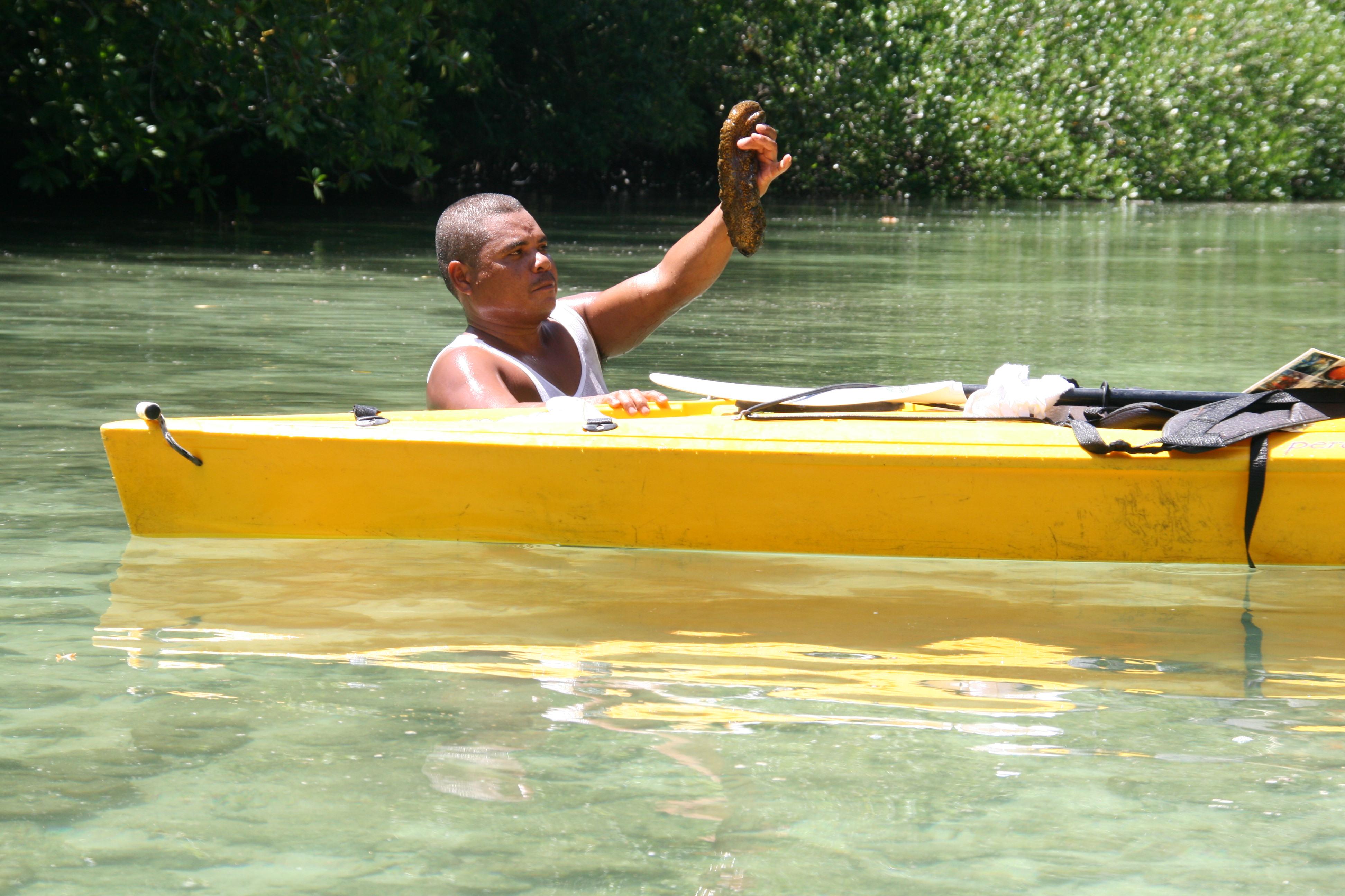 Ein Griff auf den Lagunengrund, und die Seegurke ist fast angerichtet