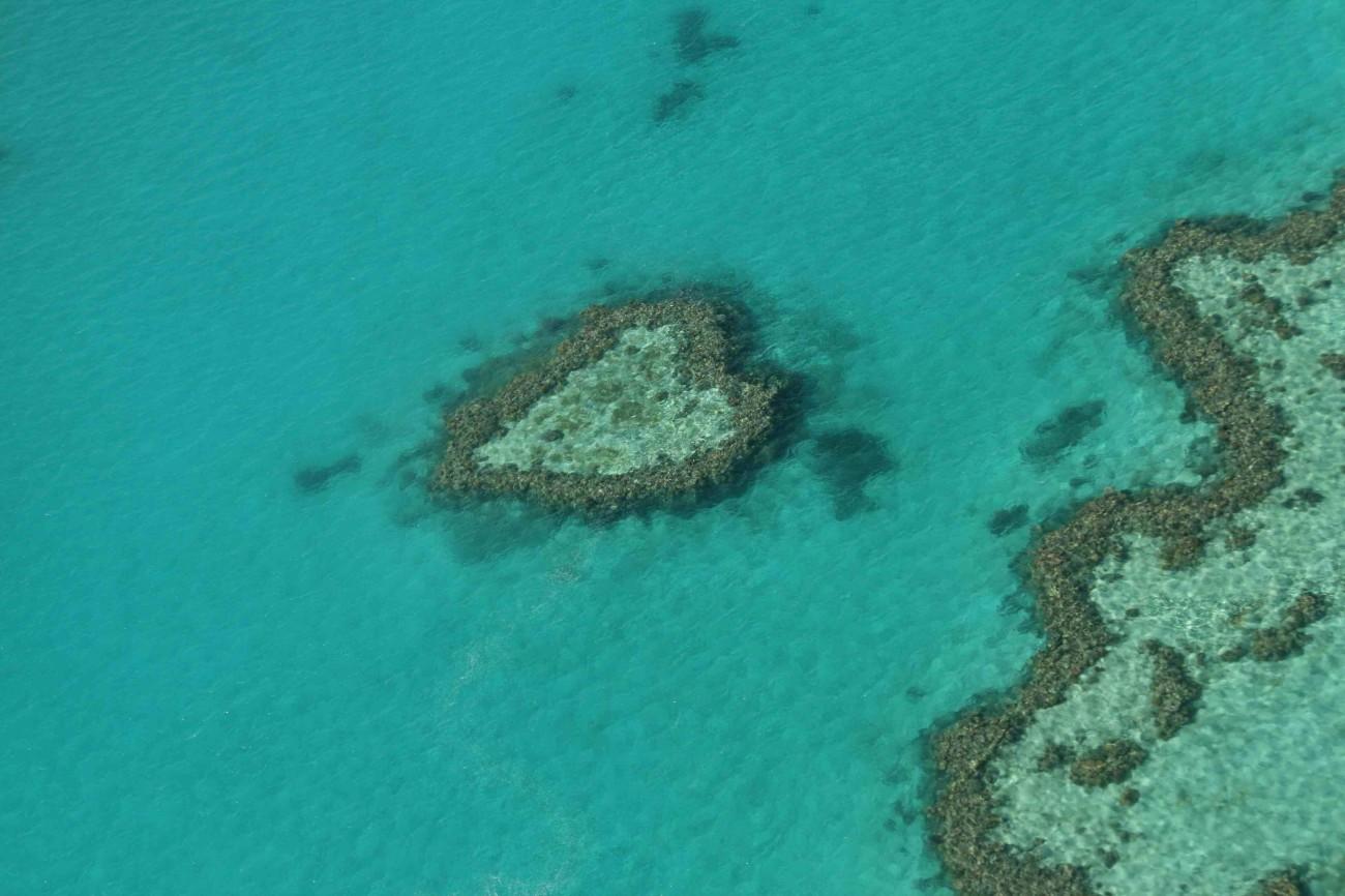 Das berühmte Heart Reef