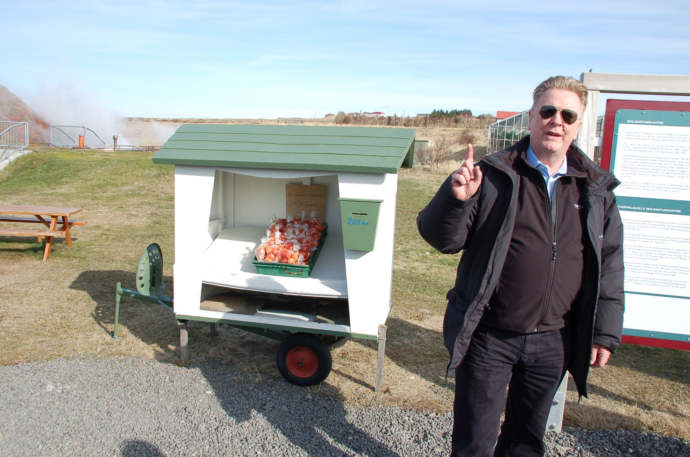 Arthur, mit einem Beutel isländischer Tomaten, gezogen in einem Gewächshaus, das mit Erdwärme gespeist wird