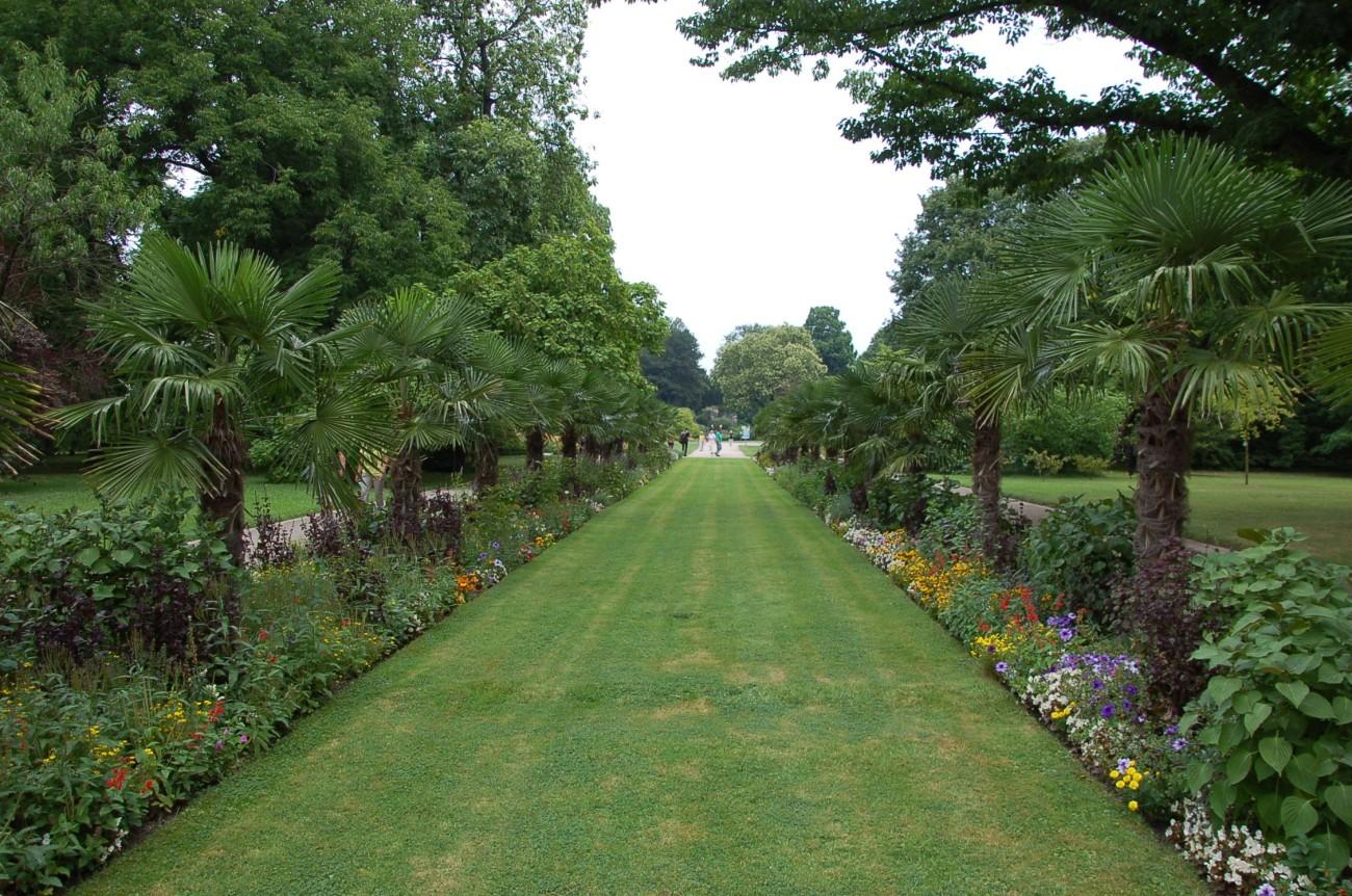 Der Botanische Garten beherbergt Deutschlands einzige Palmenallee. Noch ein Argument für die Selbstwahrnehmung als nördlichste Stadt Italiens Der botanische