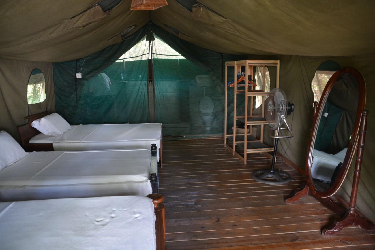 """My definition of """"glamping"""": Das Zelt hat alles, was der Safari-Tourist wünscht"""