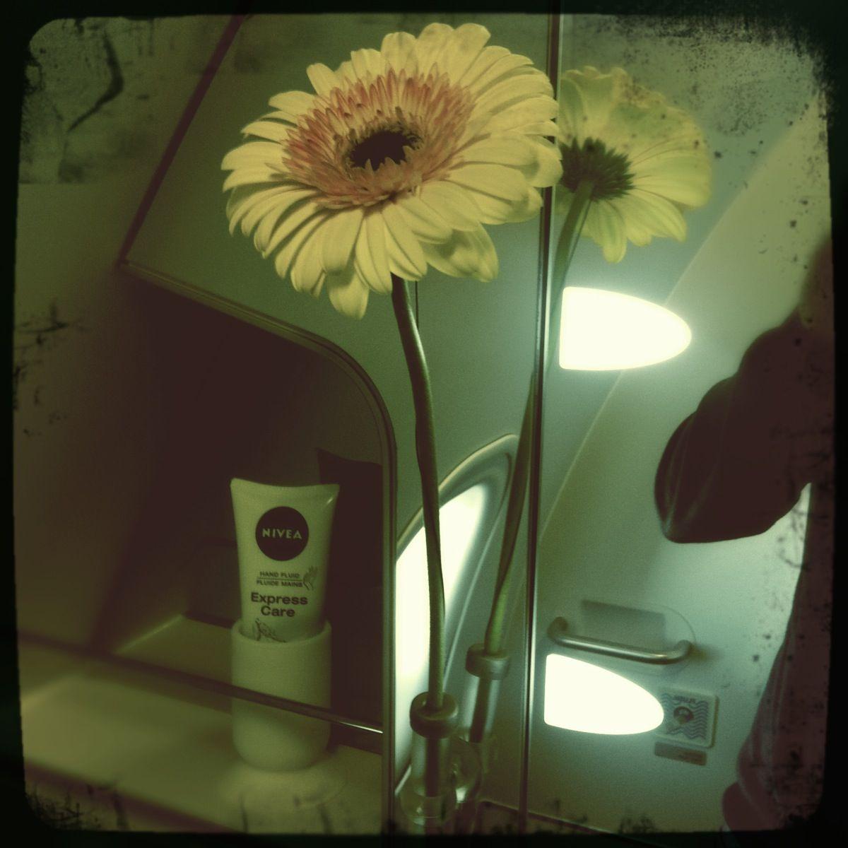 Blumen für die Vielflieger? Nur unter bestimmten Bedingungen