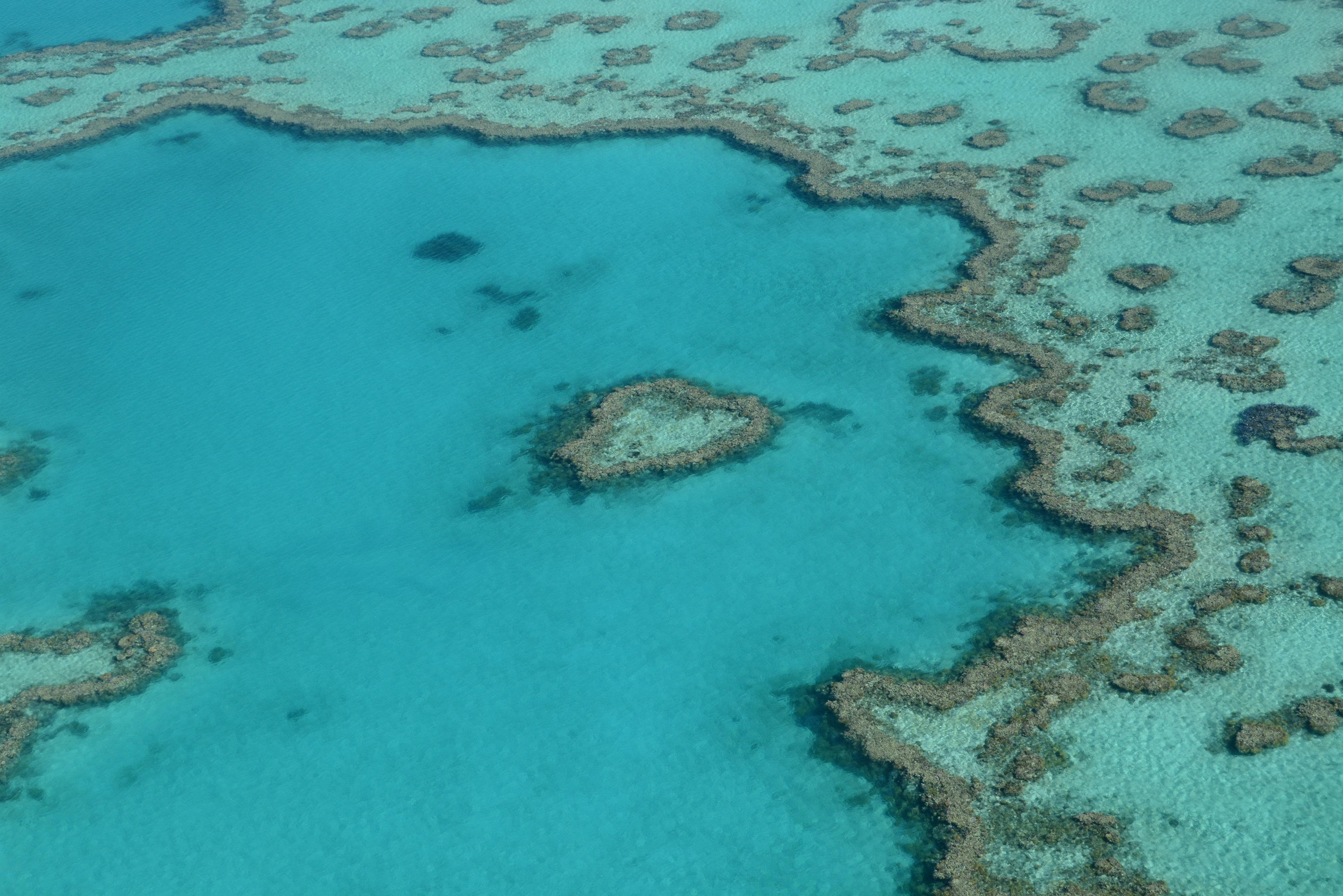 Rundflug über die Whitsundays und das Great Berrier Reef