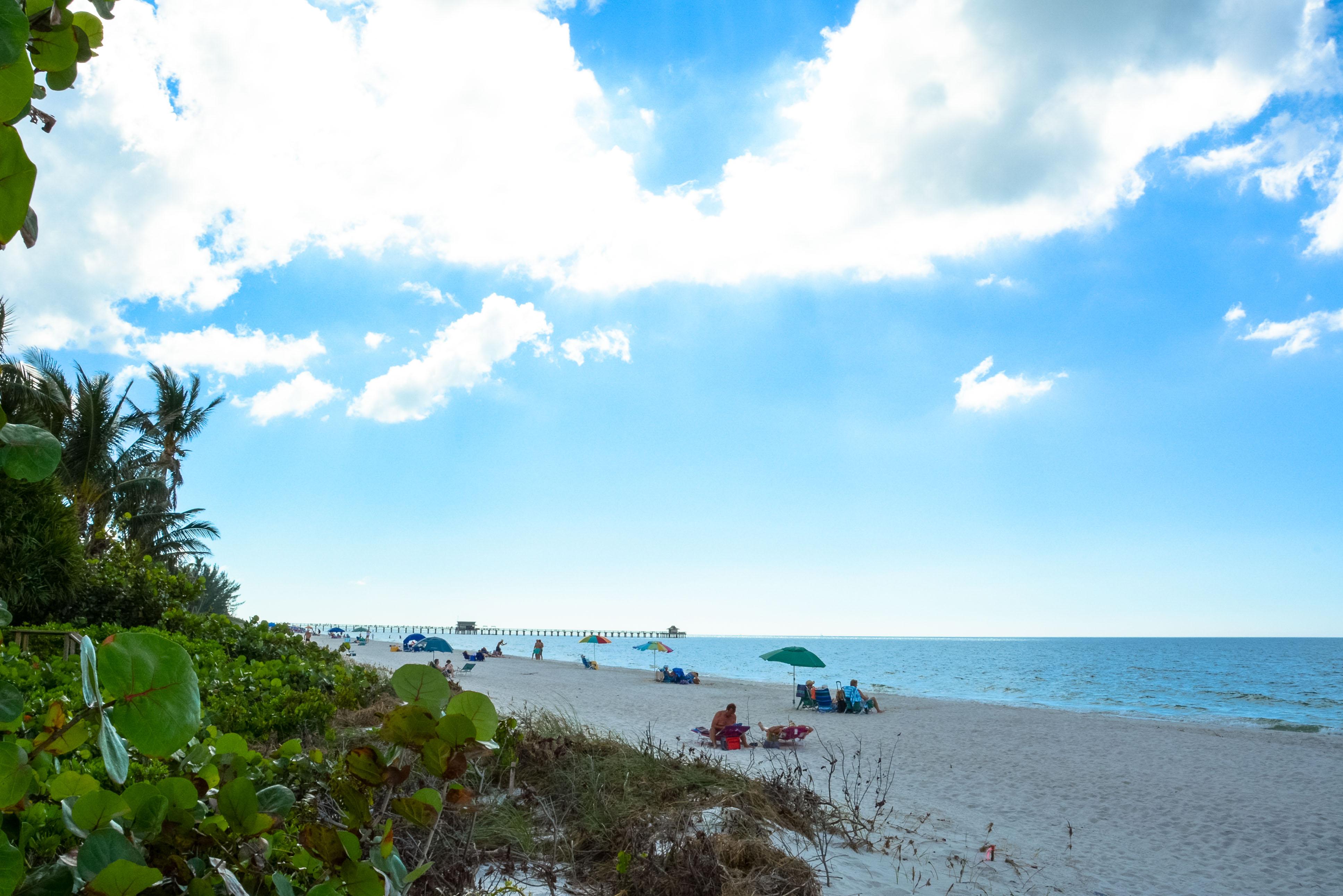 Floridas Strände, Key West, Higgs Beach, Clearwater Beach, Sanibel Island, Panama City Beach Shell Island, Gulfport Beach, Cumberland Island, Ameila Island, Municipal Beach Palm Beach, Naples Beach