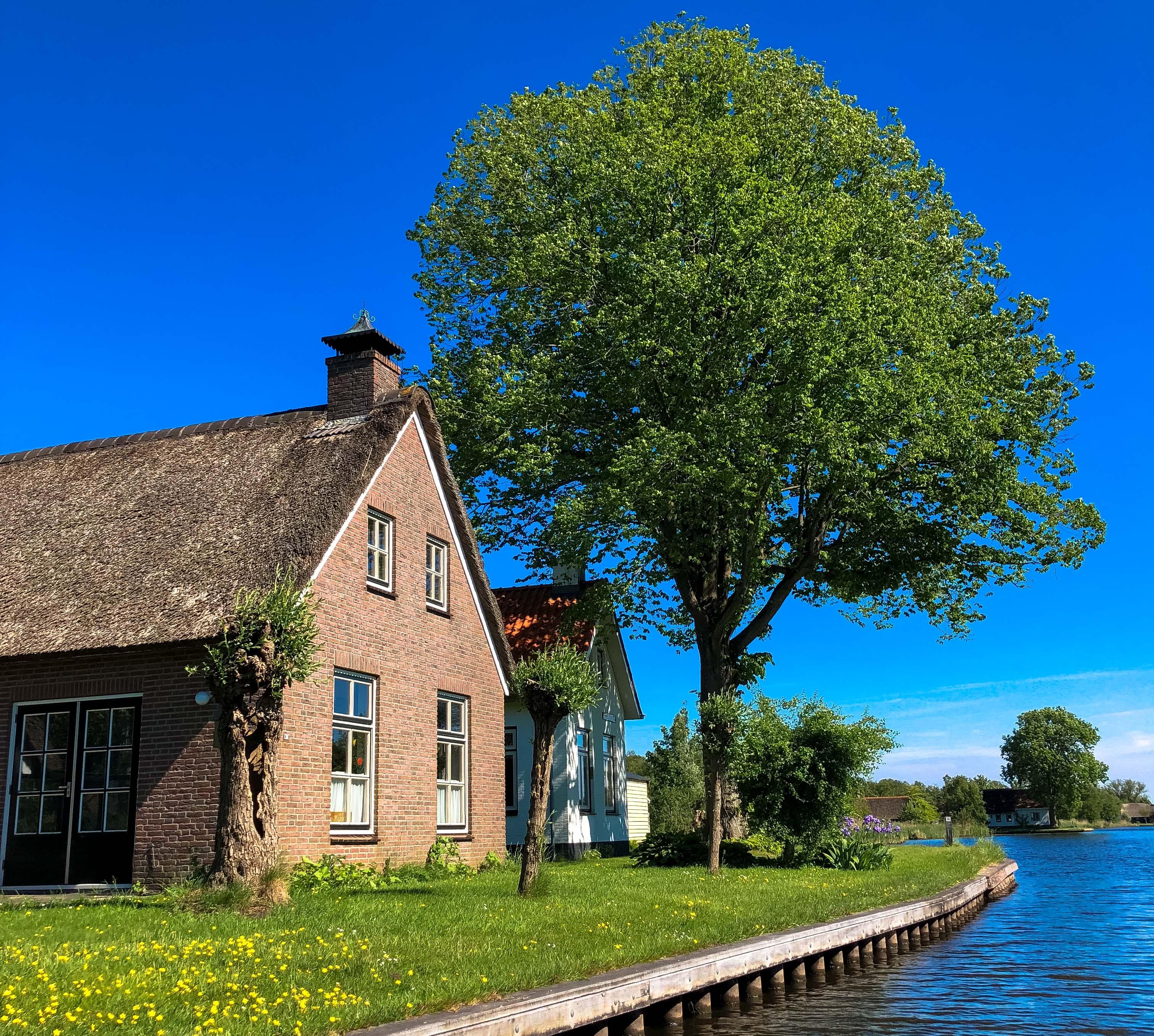Weerribben-Wieden, Nationalpark, Kanutour, Holland, Reiseblog,