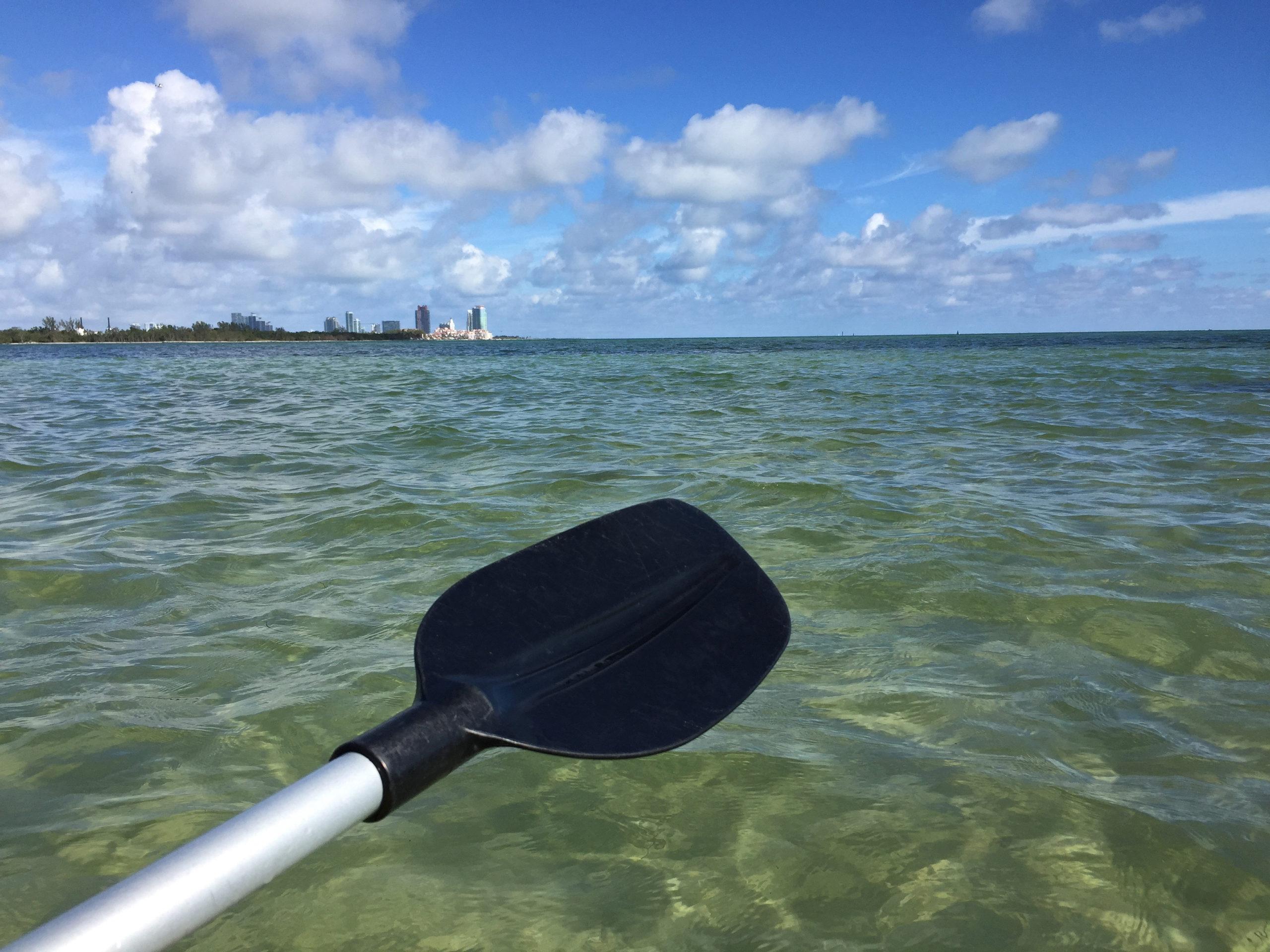 Ein Paddel vor der Skyline von Miami mit viel Wasser