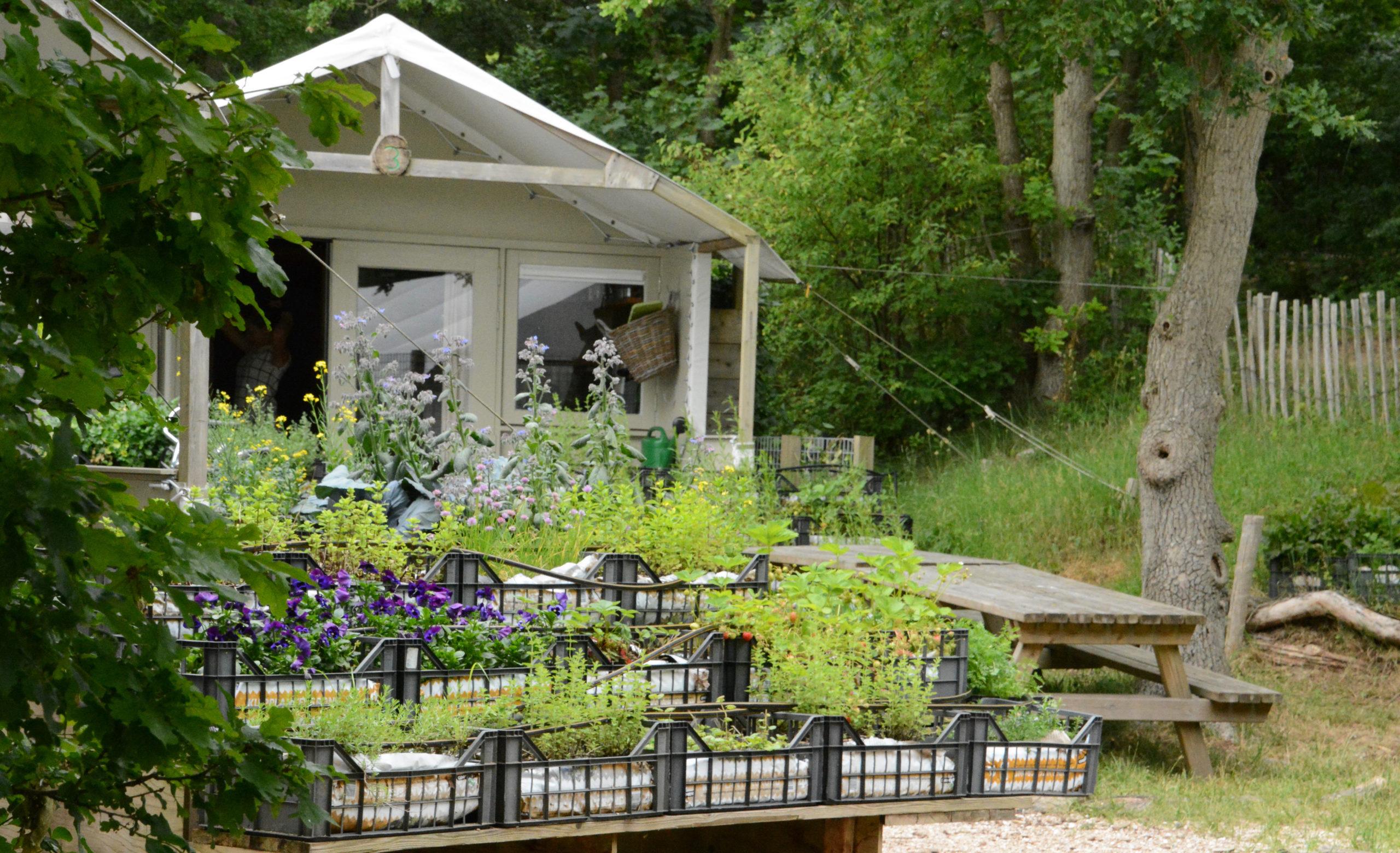 Gartenhaus mit Blumen auf dem Campingplatz Gerversduin bei Bergen