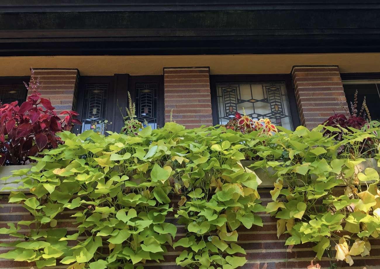 Außenansicht von Robie House an der Route 66 mit Balkon und Pflanzen