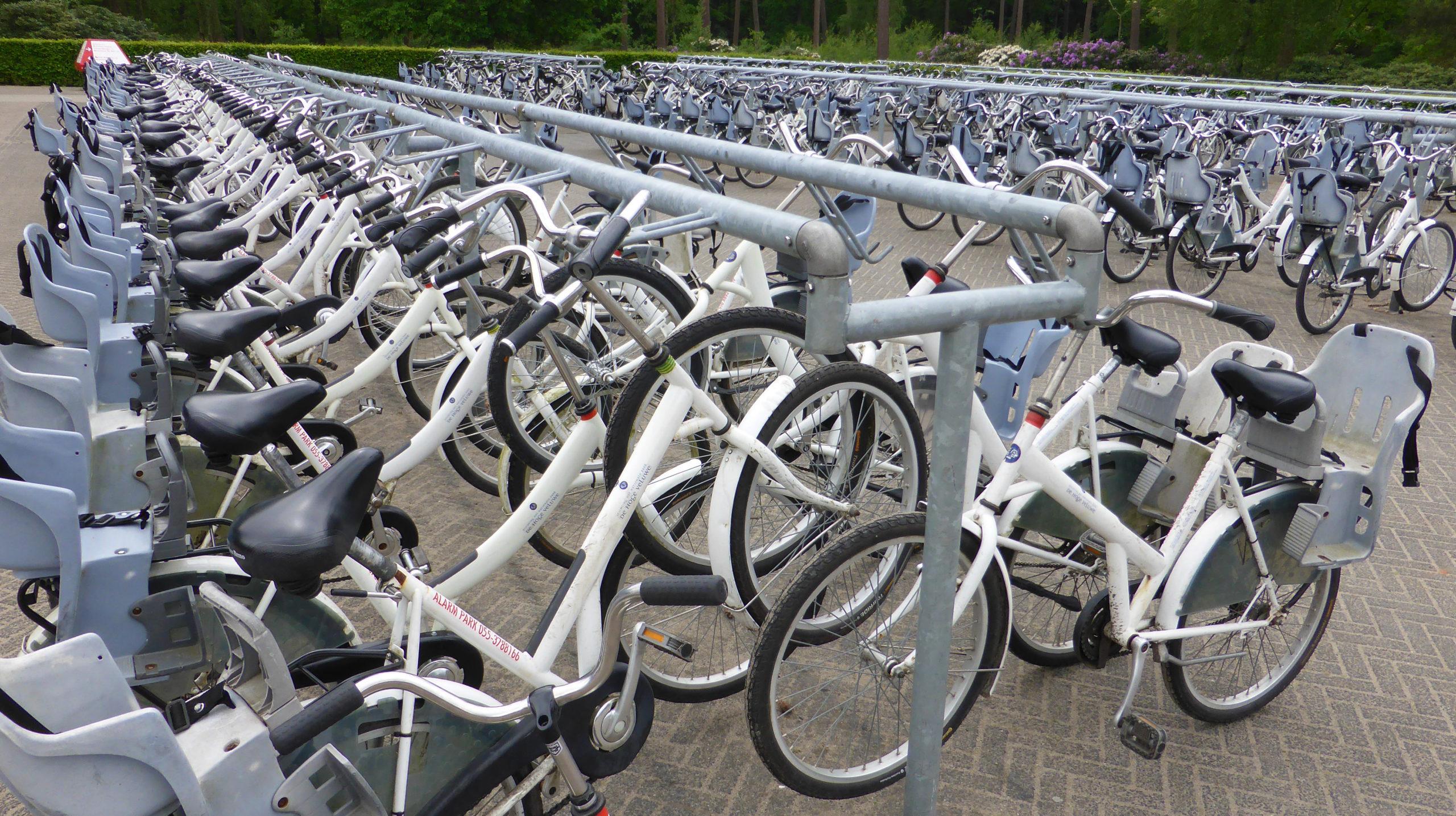 Flotte kostenloser weißer Fahrräder im Nationalpark Hoge Veluwe