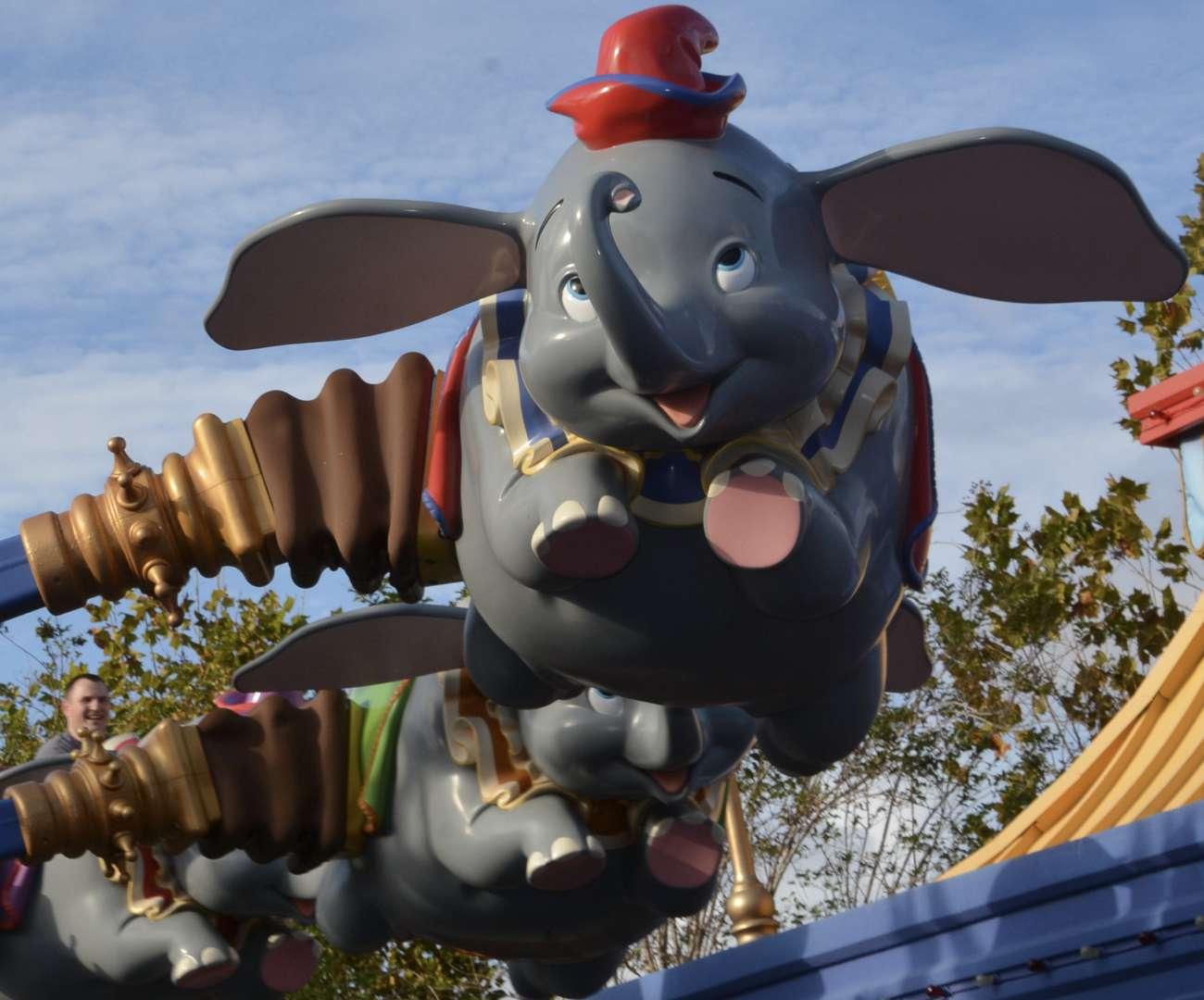 Themenparks in Florida versprechen Spaß für die ganze Familie. Hier: erwachsener Mann im Dumbo.Karussel