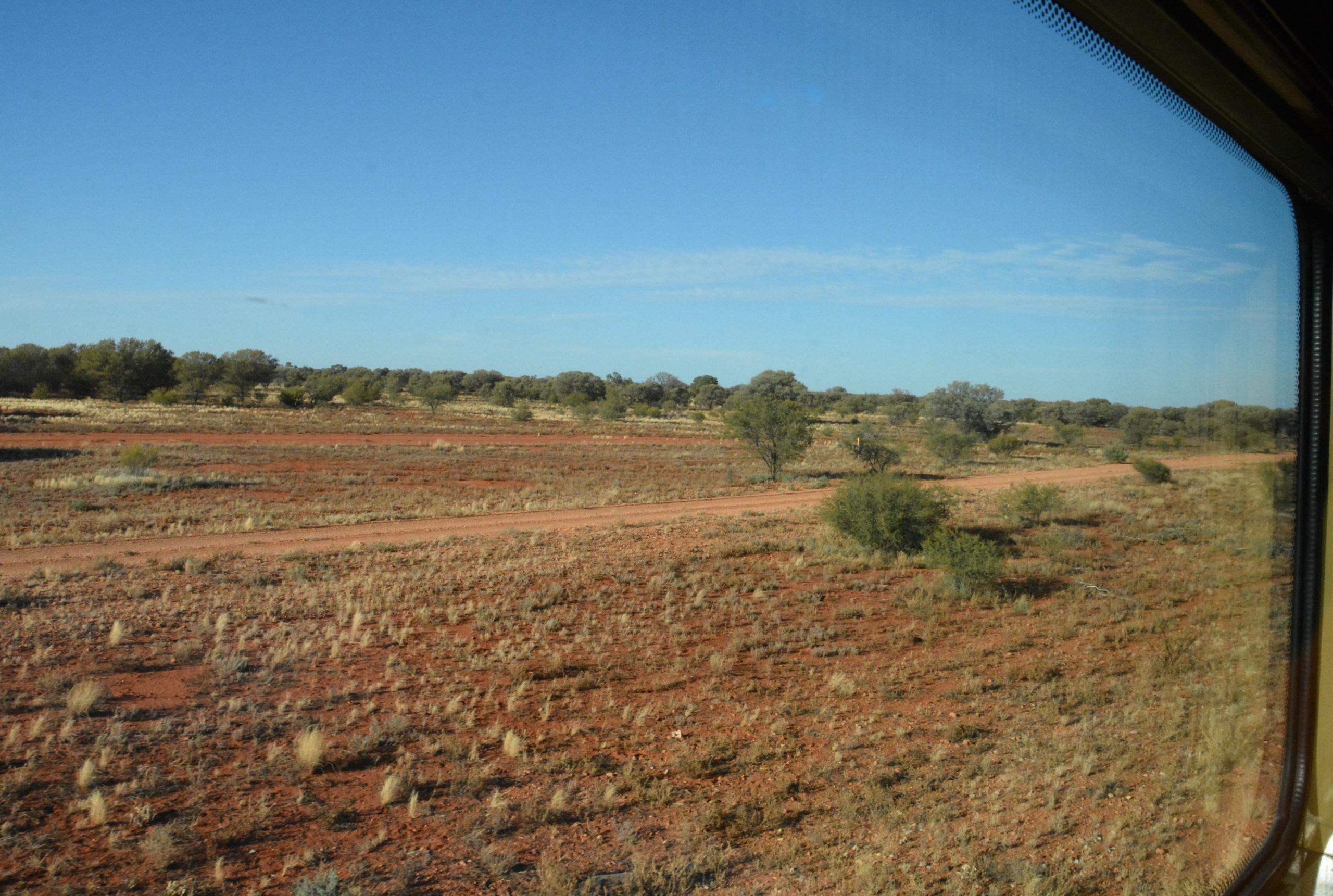 Blick auf die Akazien im australischen Busch aus dem Fenster des Ghan