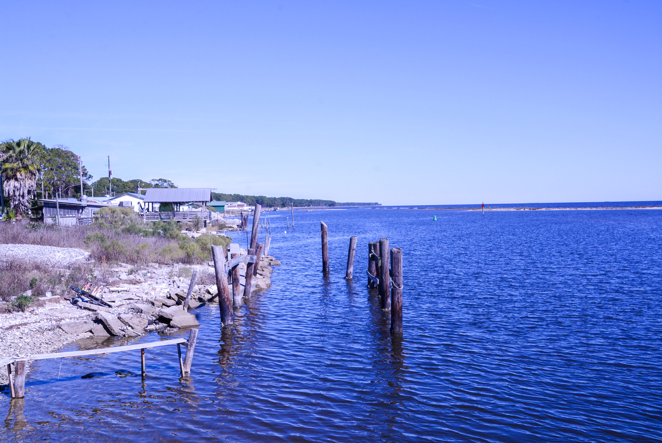 Austernbänke an der Küste des Panhandle in Florida