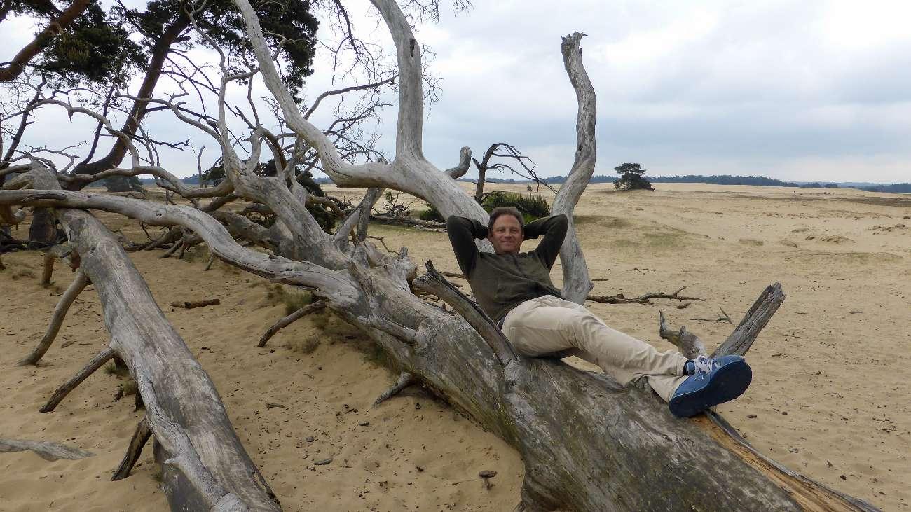Blogger Ralf Johnen ruht sich auf einem toten Baumstamm im Nationalpark Hoge Veluwe aus