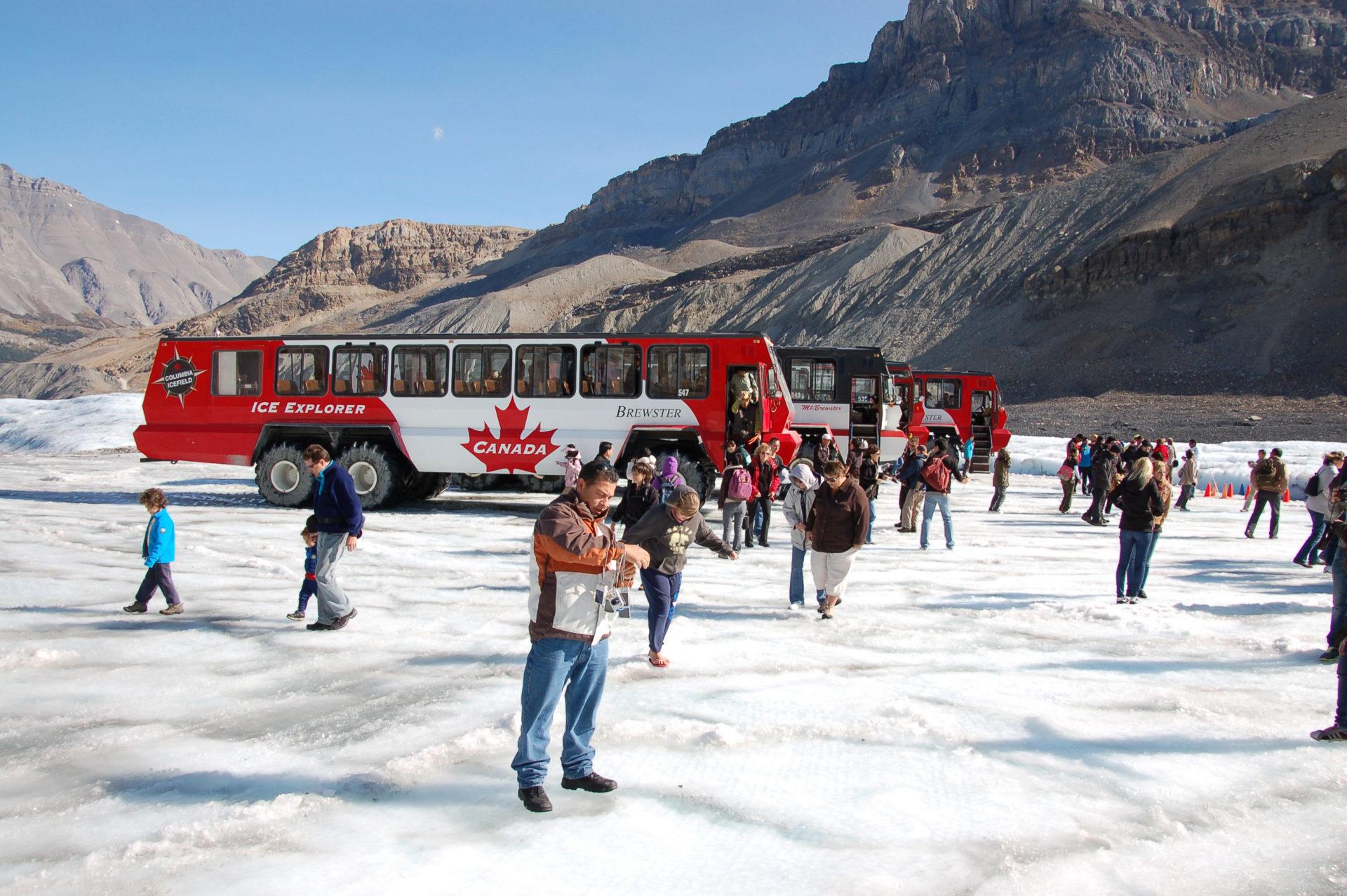 Mit dem Ice Explorer auf dem Columbia Ice Field fahren gehört zu den Highlights der Reise mit dem Rocky Mountaineer ab Jasper