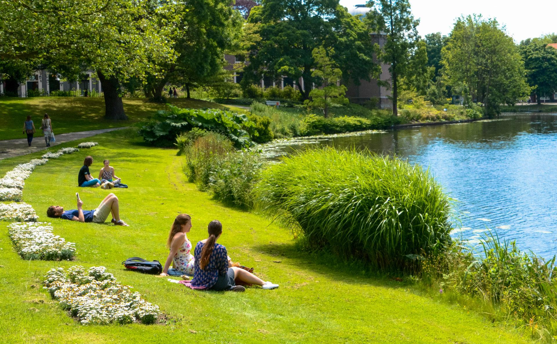Der Hortus Botanicus in Leiden mit Wiese und sonnenbadenden Studenten