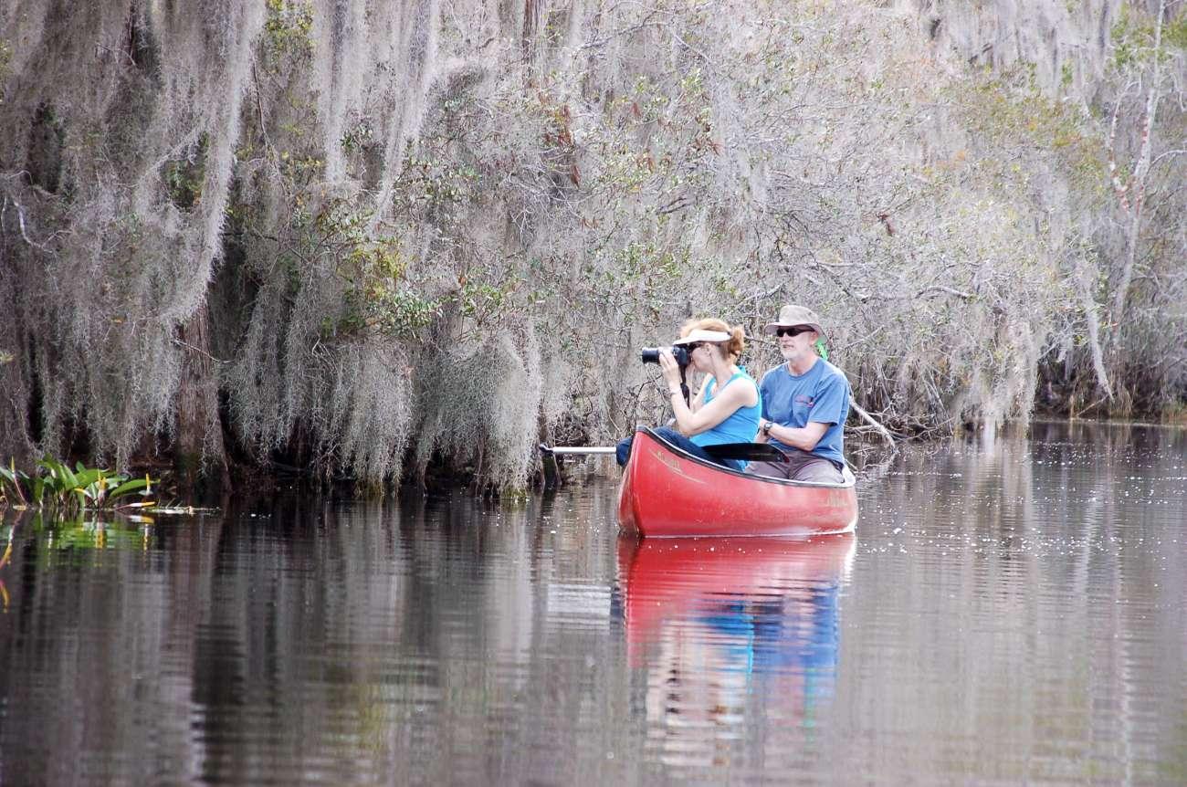 Kanufahrer beobachten unterdessen wilde Tiere im Okefenokee Sumpf