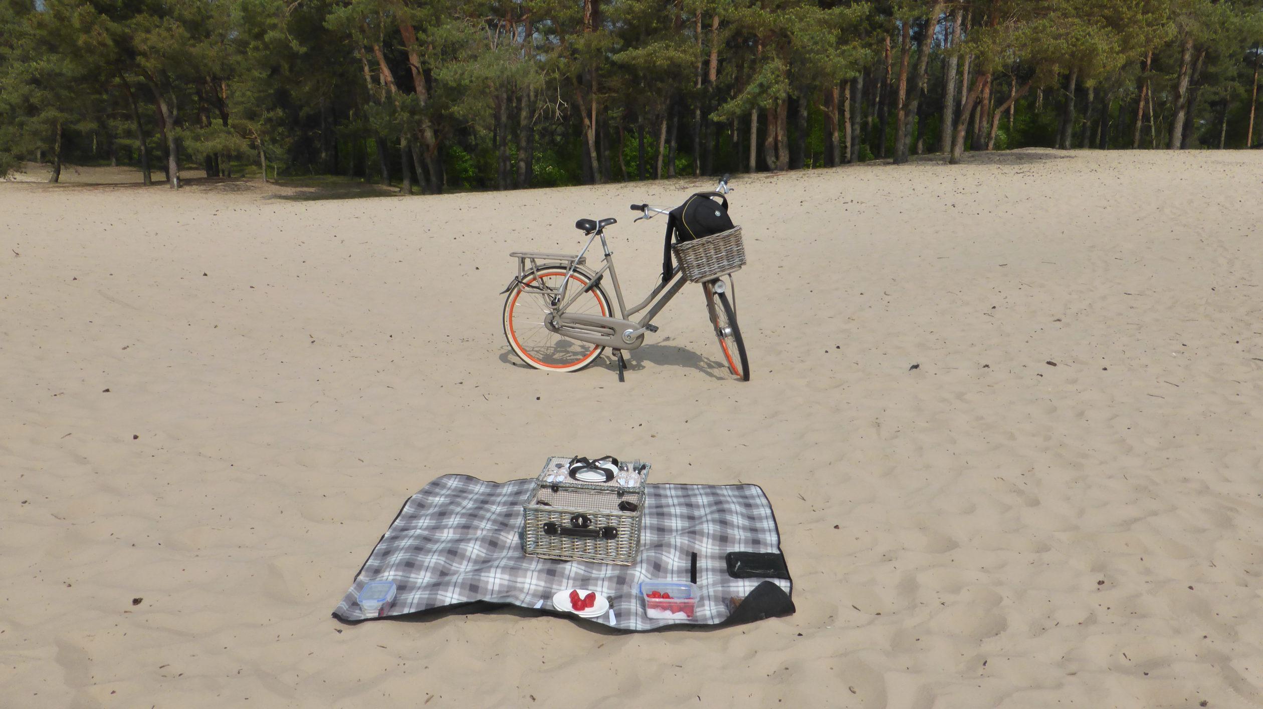 Picknick mit Decke und Fahrrad in der niderländischen Provinz Overijssel