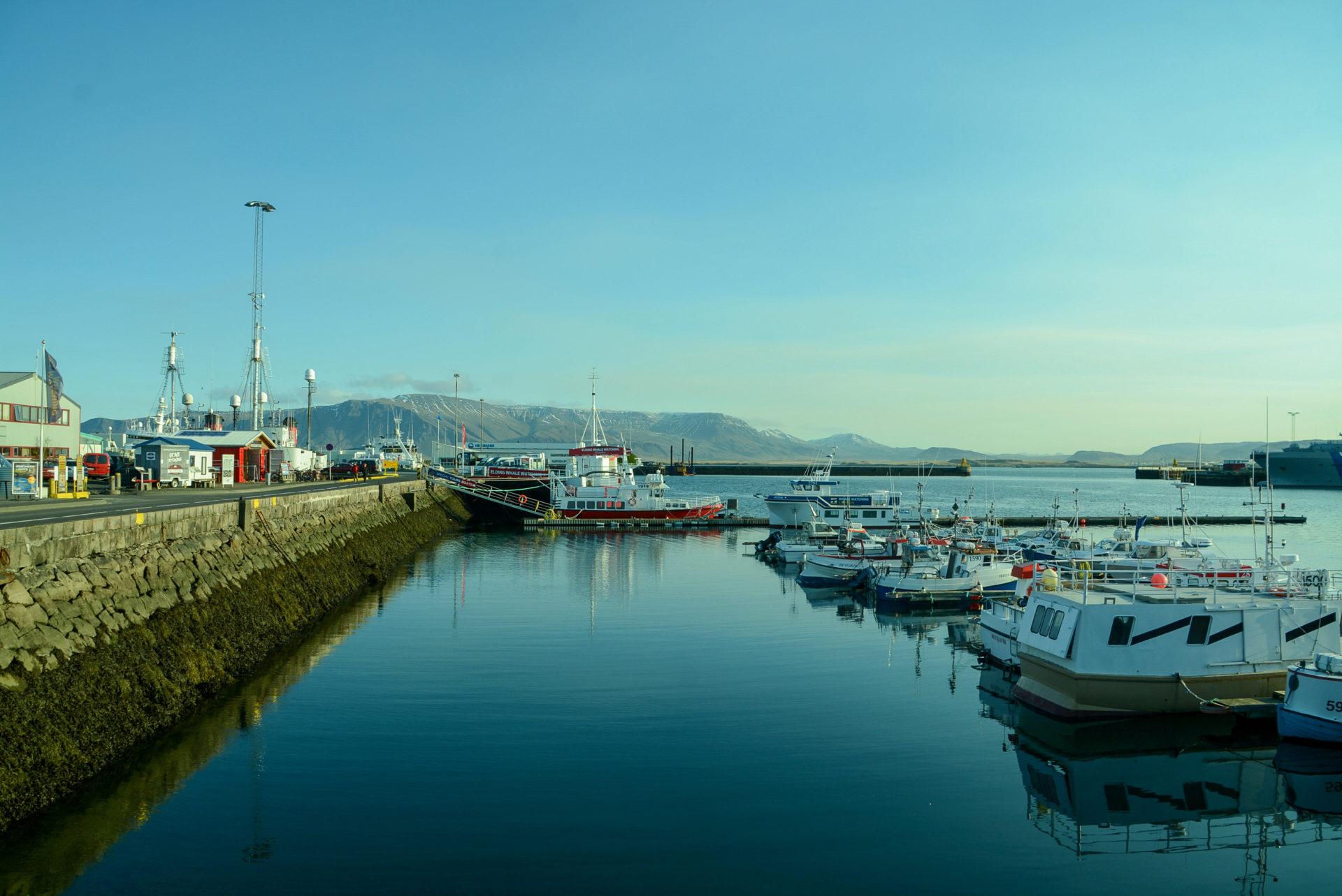 Der Hafen von Reykjavik in Island