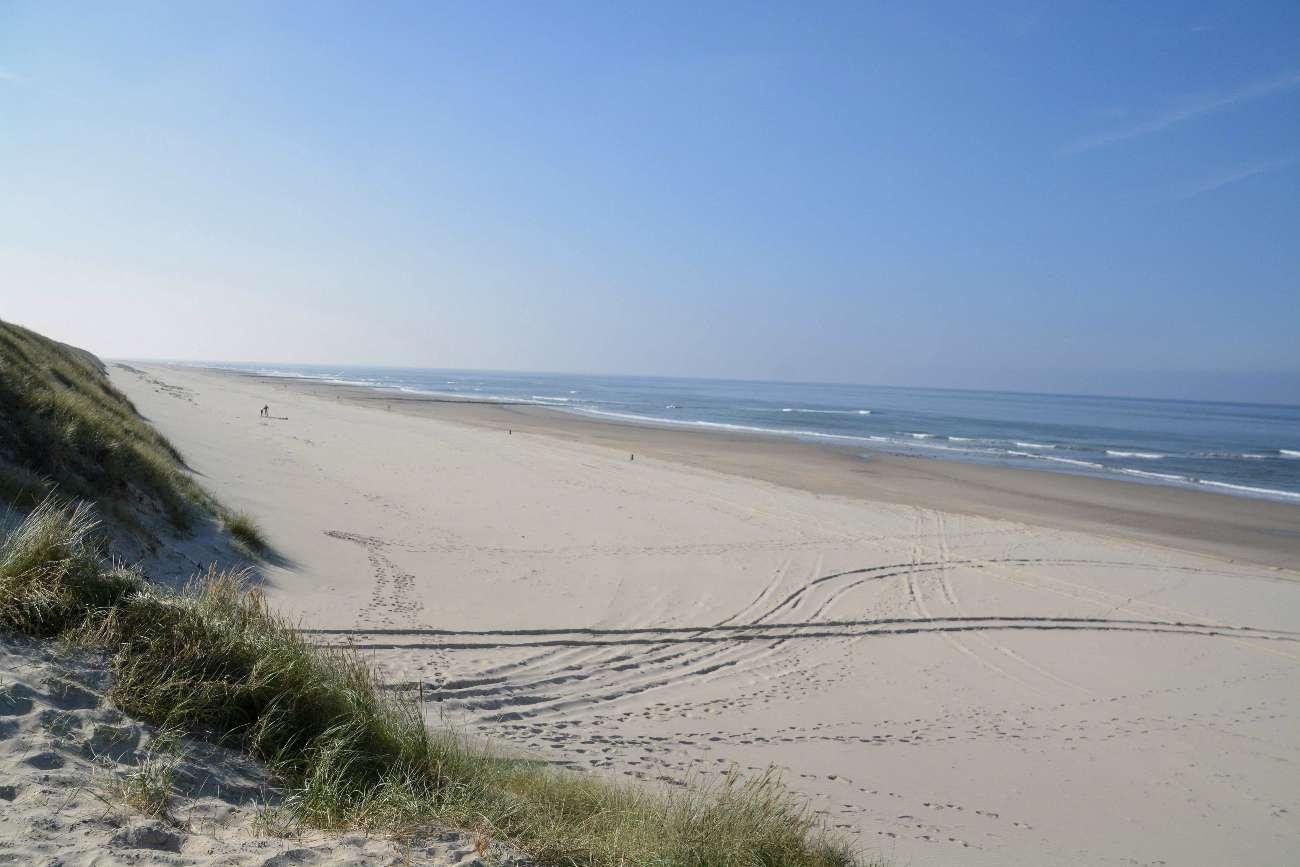 Strand und Dünen mit Nordsee im niederländischen Wattenmeer