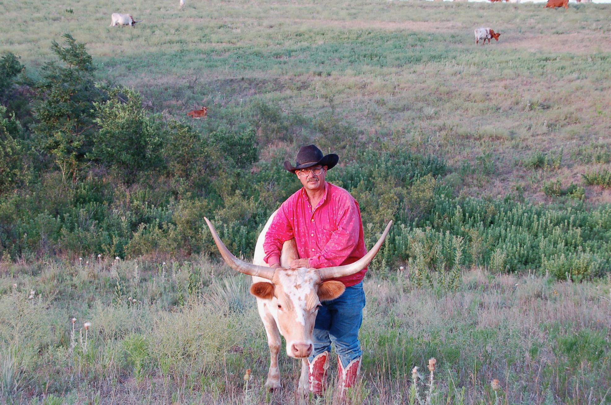 Cowboy Bill Moore mit einem Longhonr-Rind auf seiner Ranch in Kansas