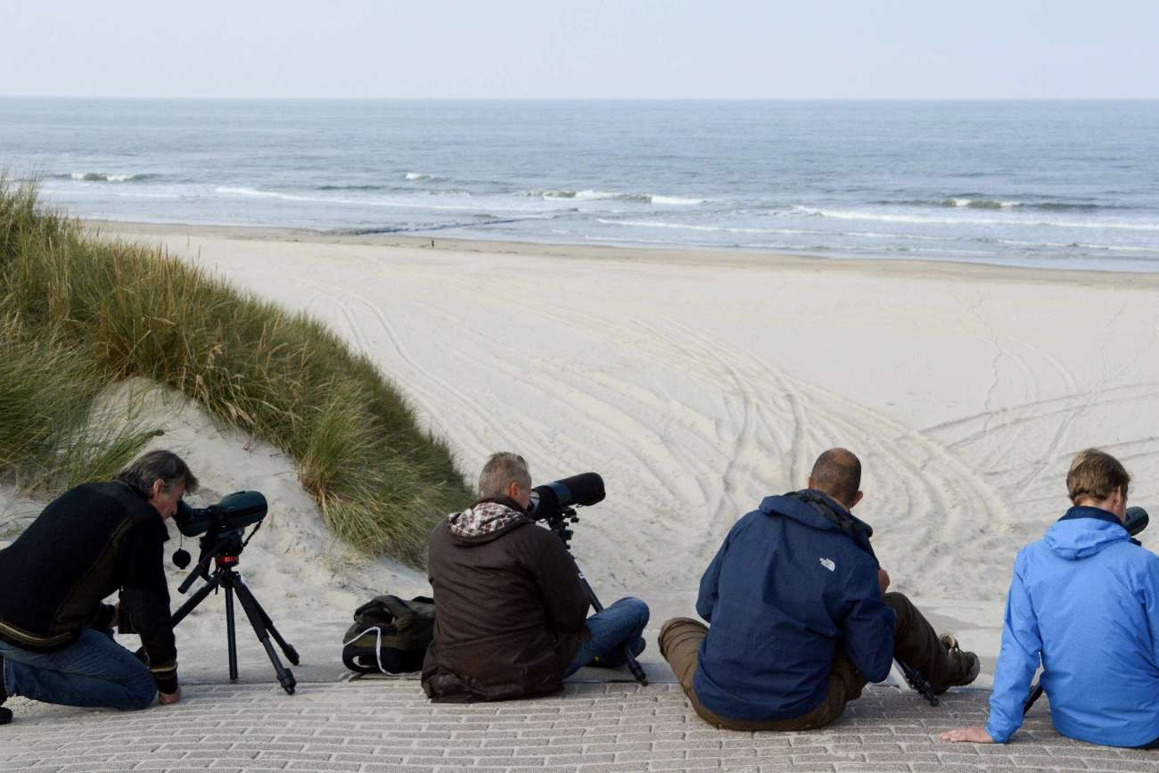 Fotografen halten Ausschau nach Robben oder Walen auf der niederländischen Nordseeinsel Vlieland
