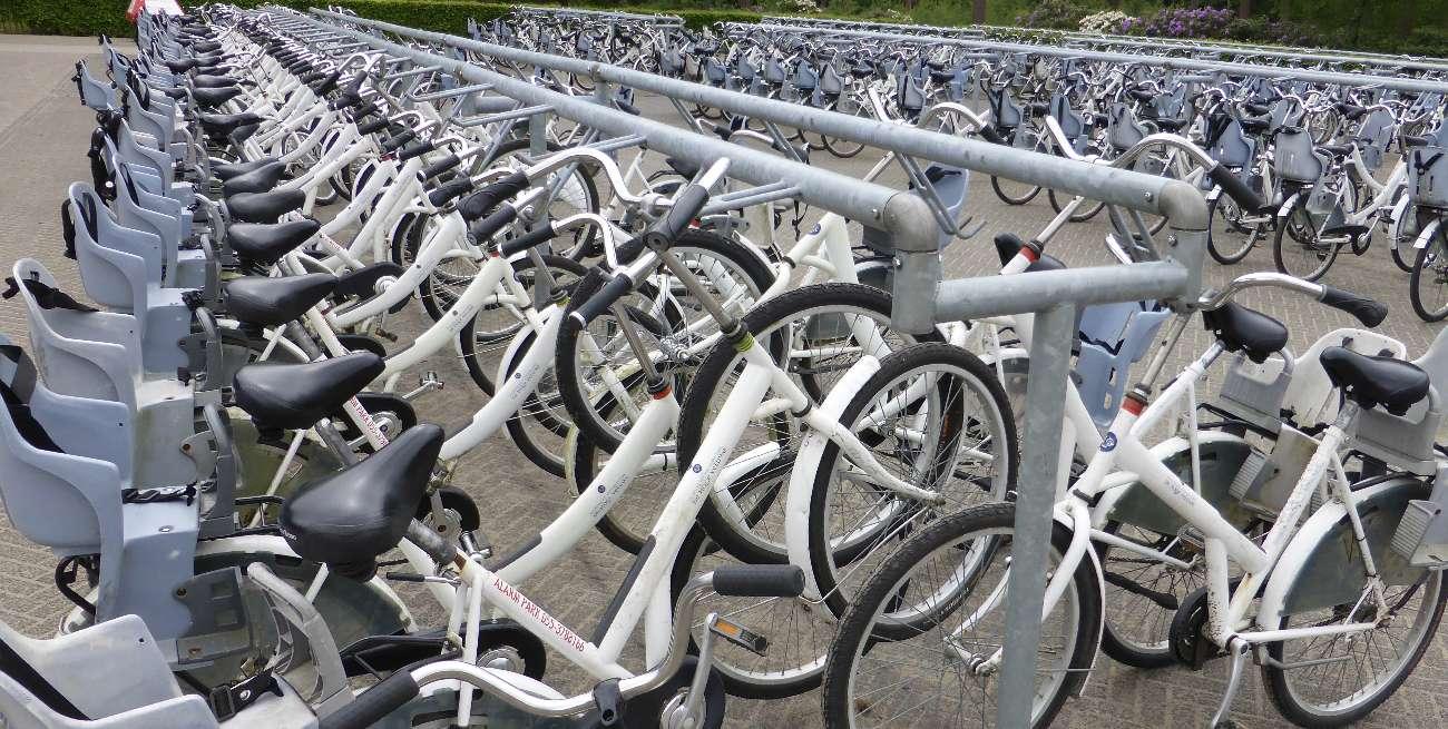 Die weißen Fahrräder sind im Nationalpark Hoge Veluwe kostenlos nutzbar