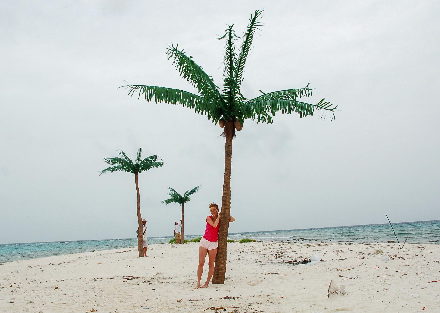 Drei Menschen auf einer einsamen Insel der British Virgin Islands lehnen an Palmen