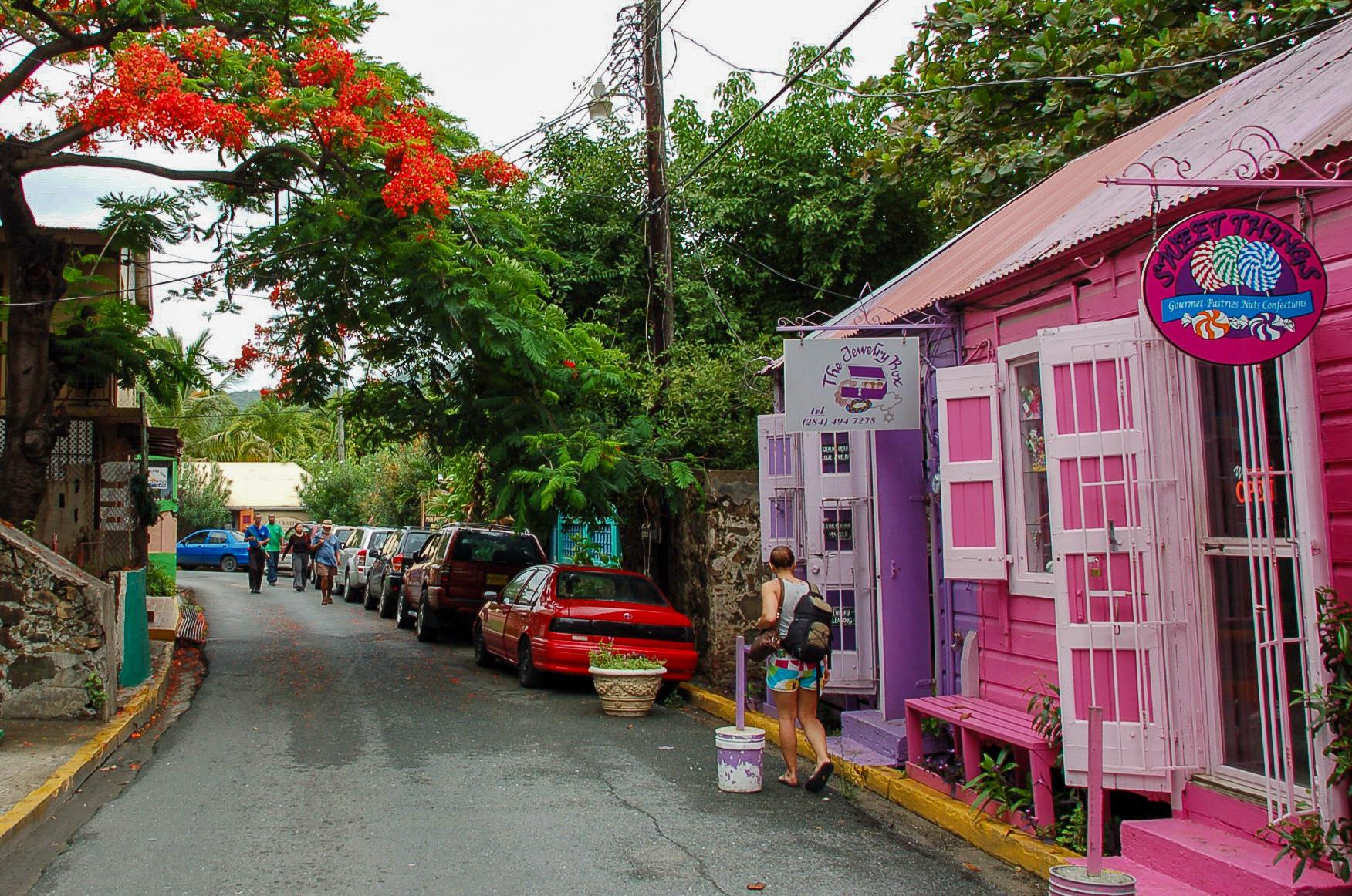 Pastellfarbene Häuser auf den BVI mit Flammenbaum