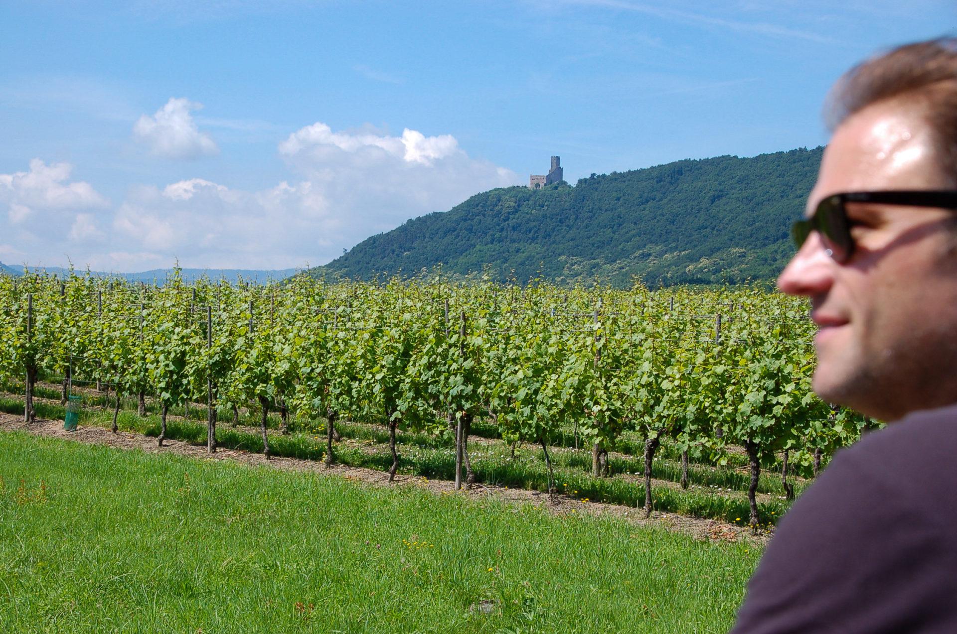 Autor Ralf Johnen beim Road Trip über die Elsässer Weinstraße fühlt sich wie Miles aus Sideways
