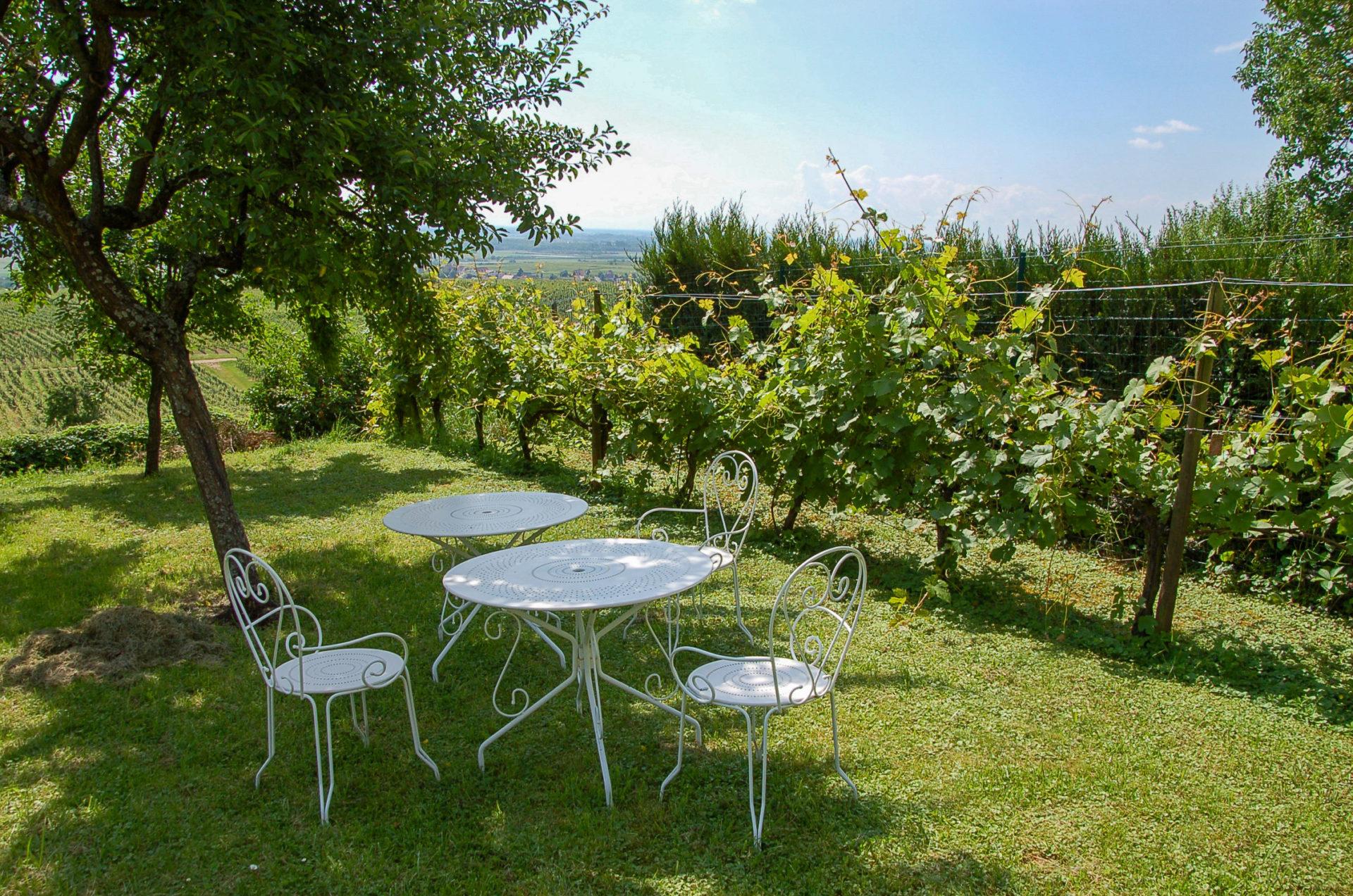 Die Pension Clos Froehn im Elsass mit Weinberg und Garten