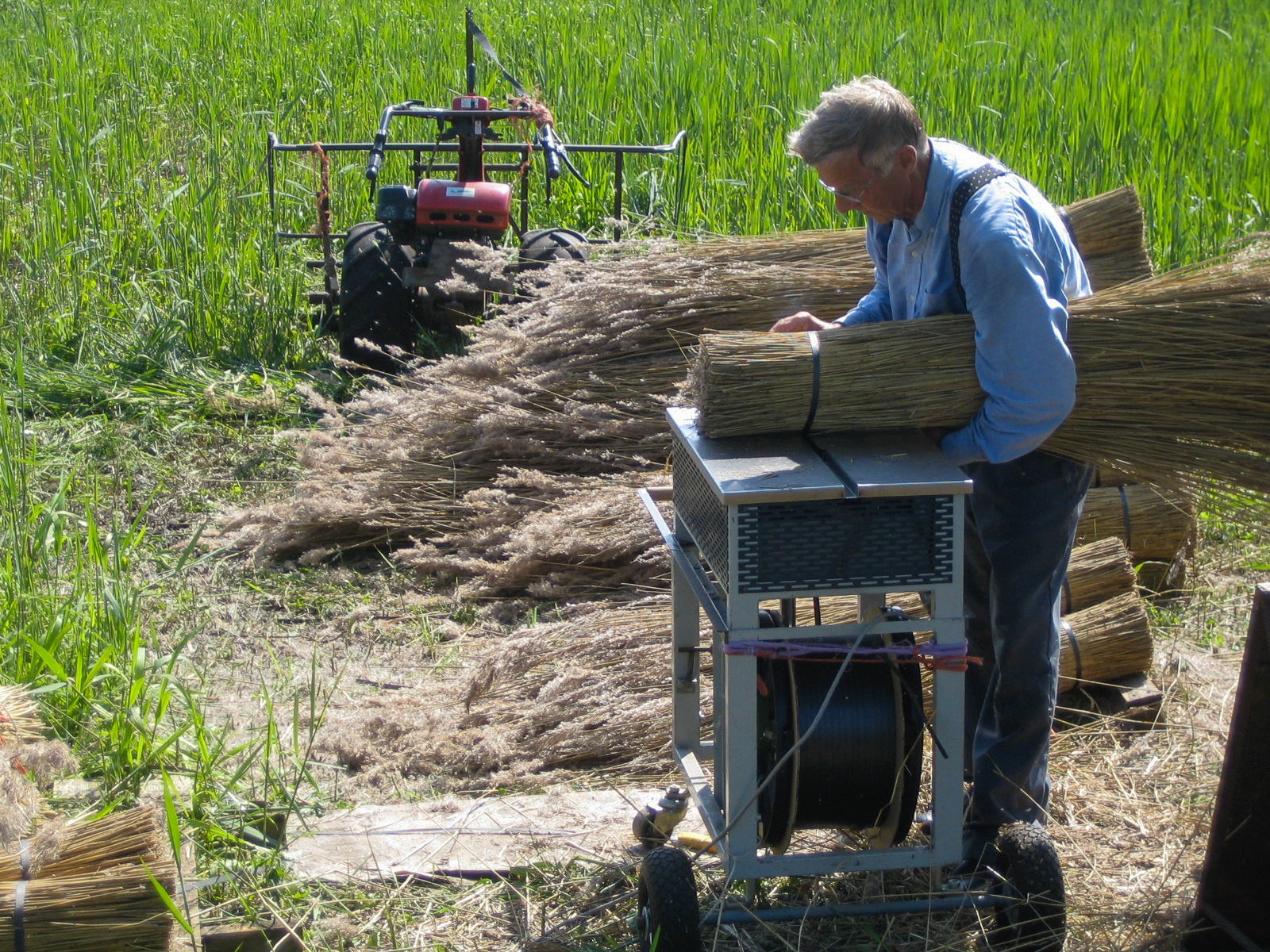 Ein Mann bindet getrocknetes Reetgras in der Nähe des Ferienpark in Giethoorn