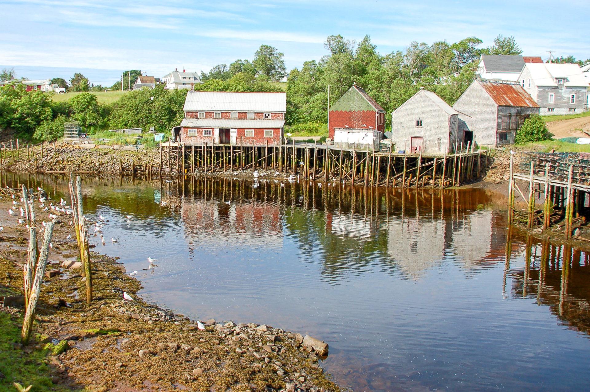 Die Bay of Fundy in Kanada hat die stärksten Gezeiten der Welt