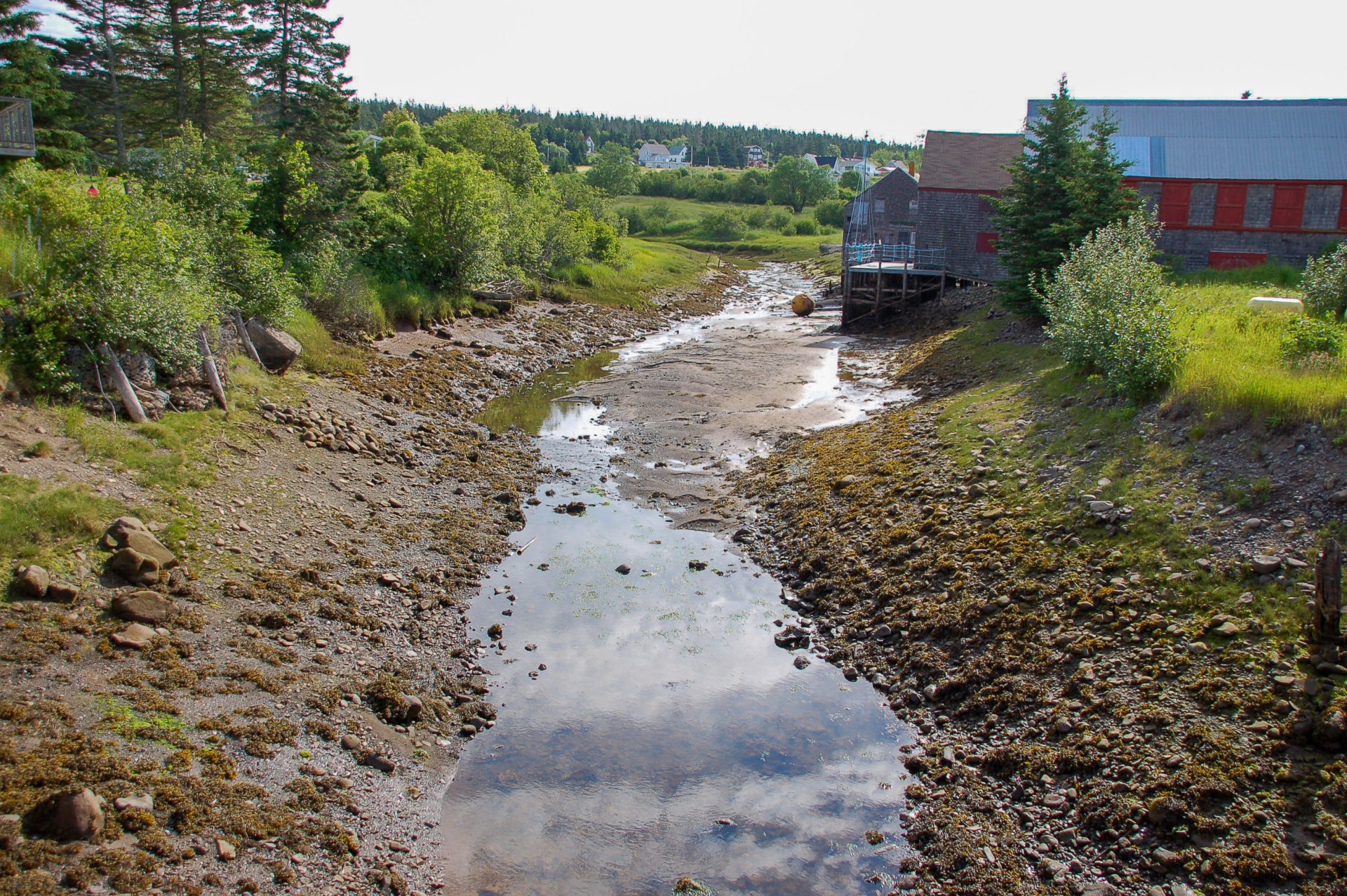 Ein Flussbett bei Ebbe in New Brunswick in Kanada