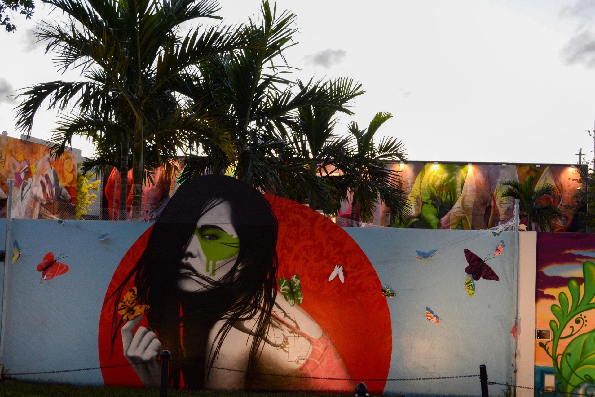Mural mit Palme und Abendhimmel in Wynwood, Miami