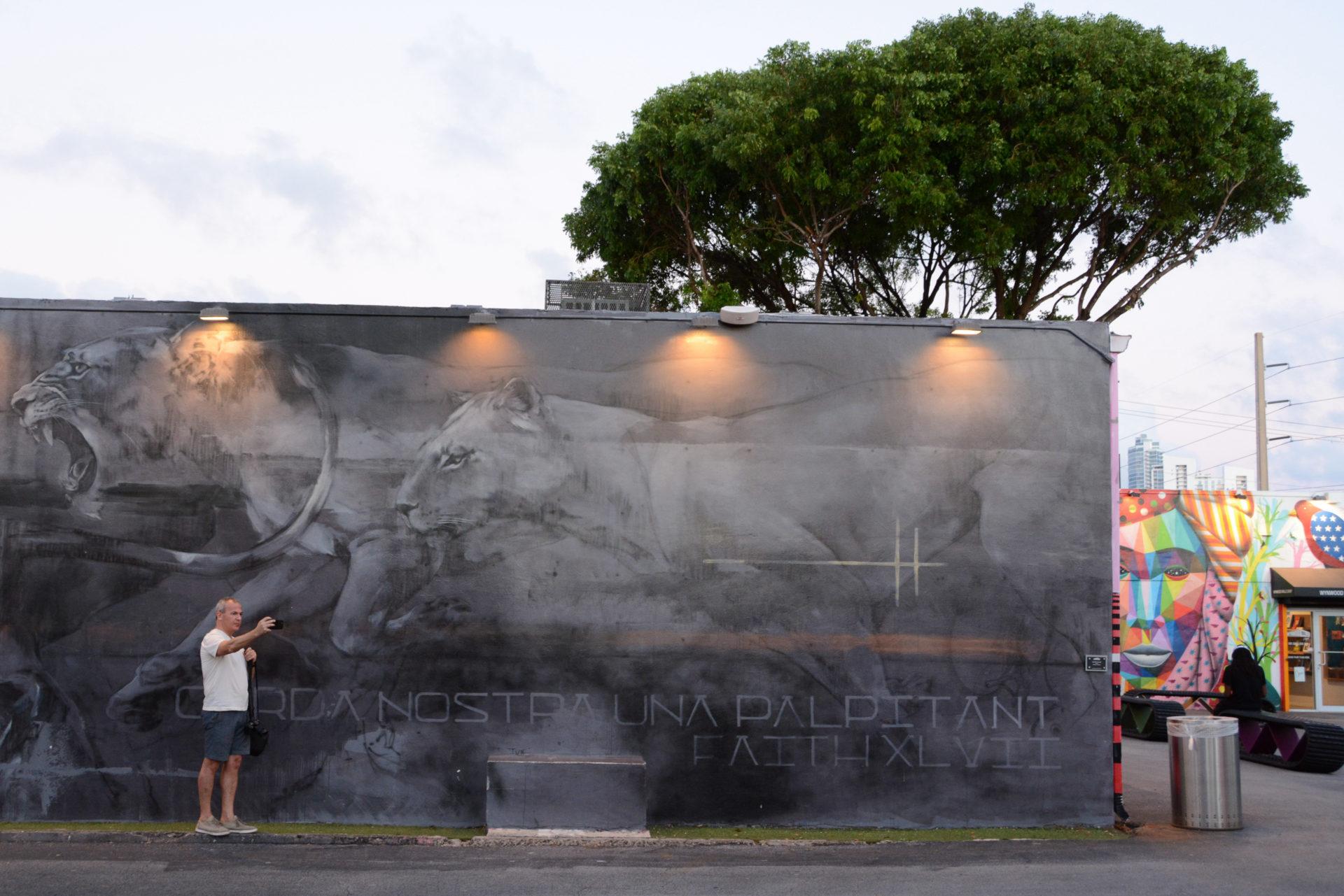 Mann macht Selfie vor Löwen-Mural in Wynwood, Miami