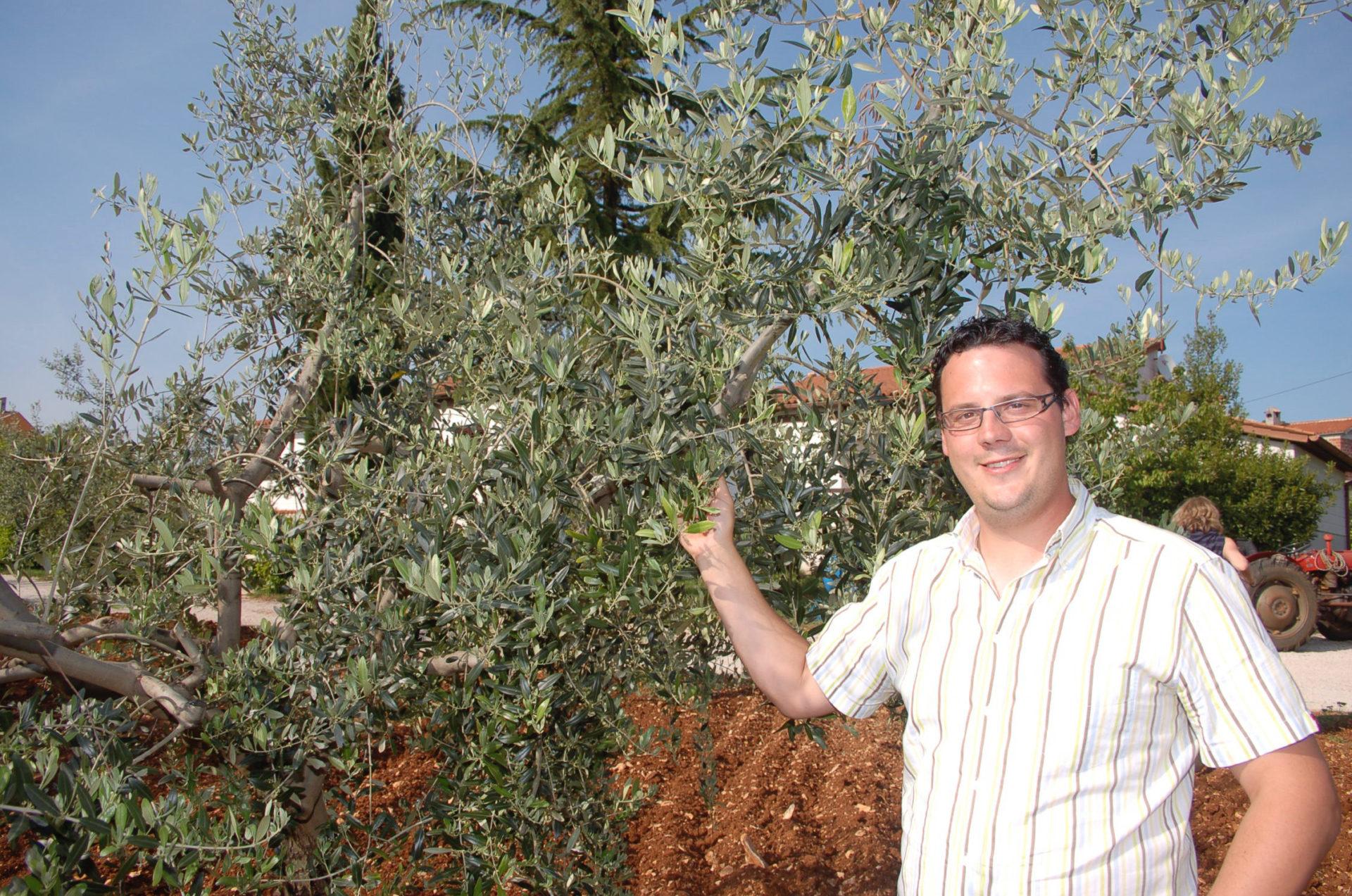 Ein Olivenölbauern in Istrien