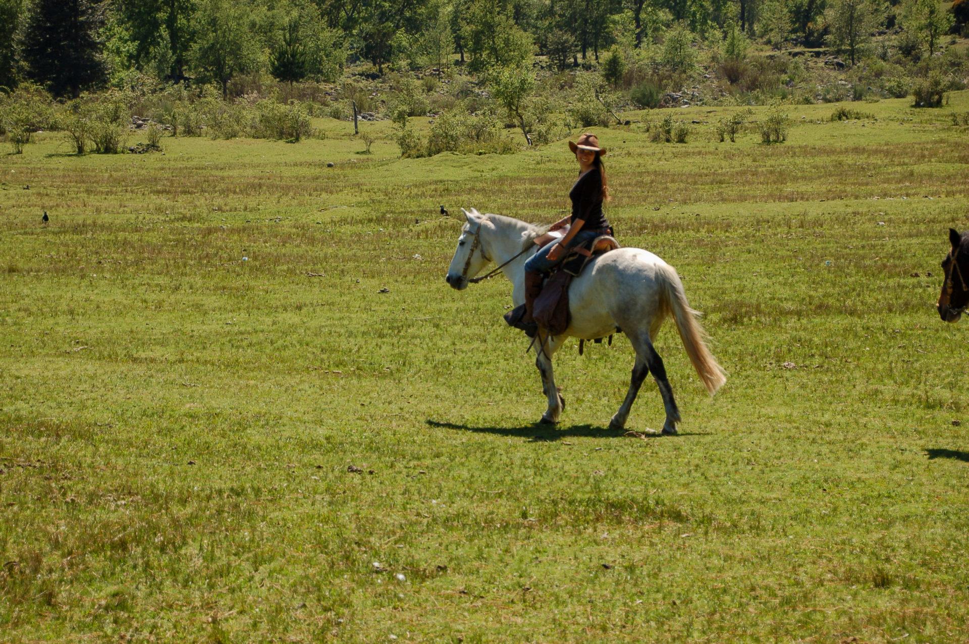 Cowgirl Gabriella mit Hut auf einem Schimmel in Chile