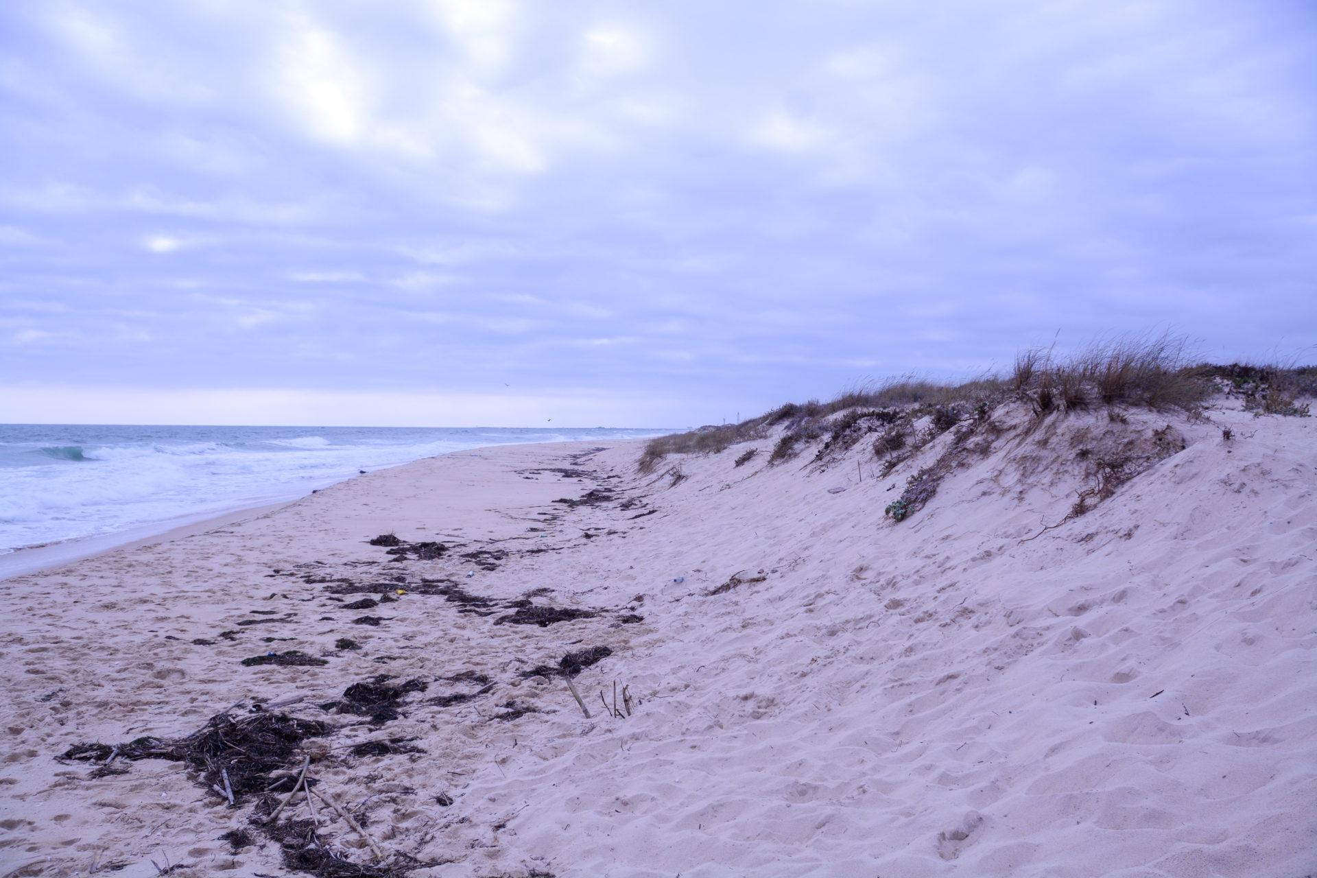 Strand, Brandung Dünen auf der Ilha do Culatra in Portugal