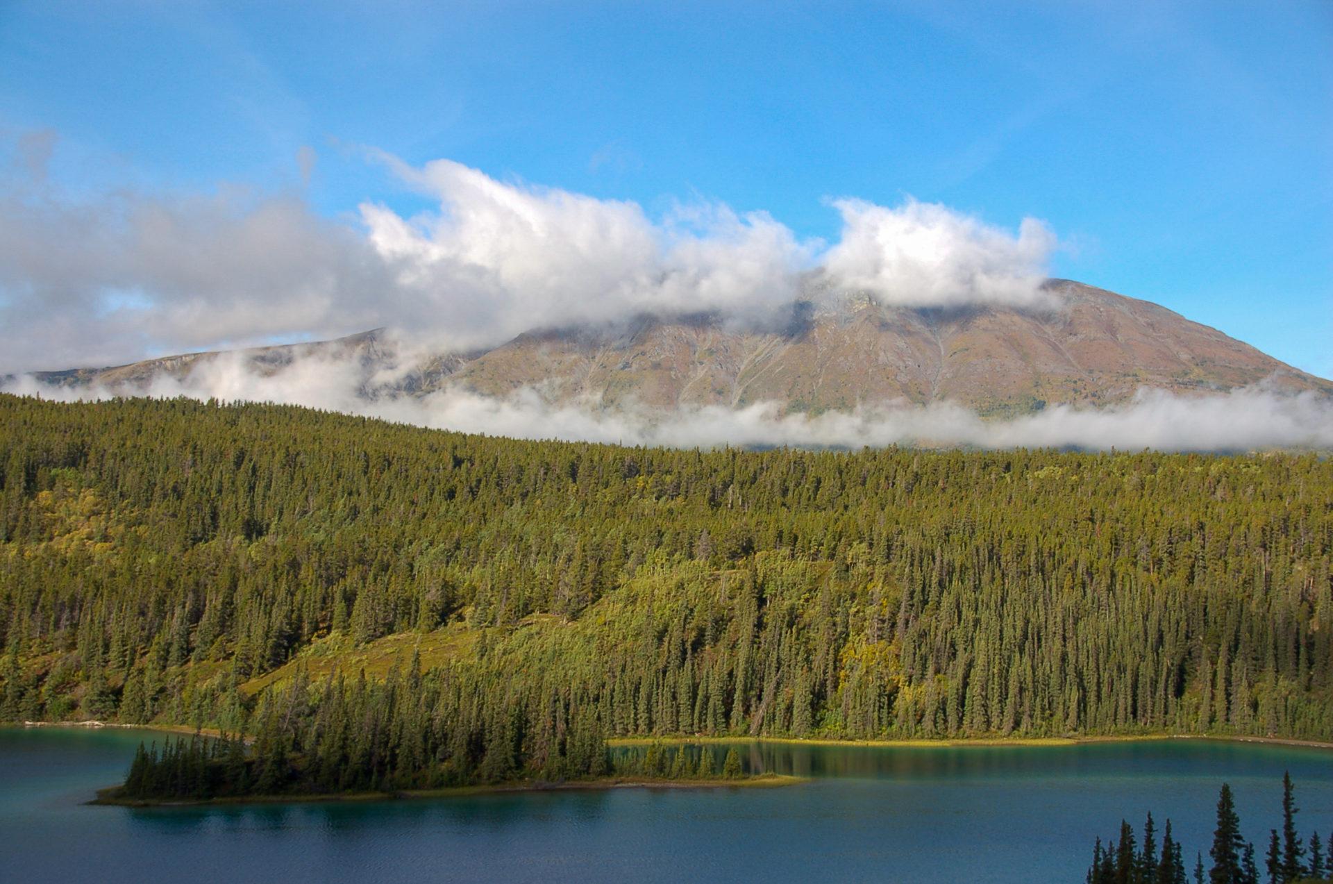 Bergsee mit Nebel und Koniferen im kanadischen Yukon