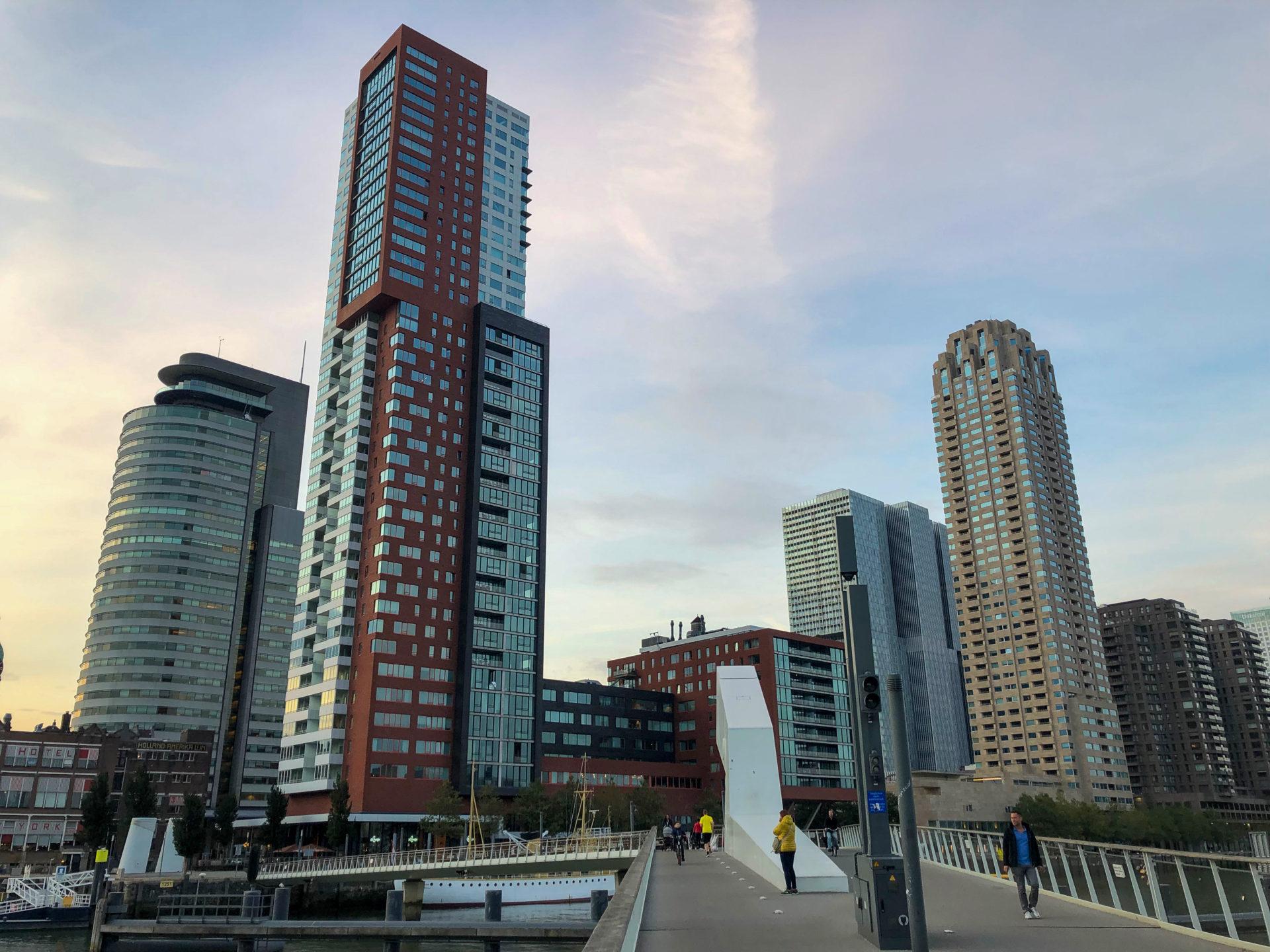 Die Skyline des Rotterdamer Viertels Kop van Zuid