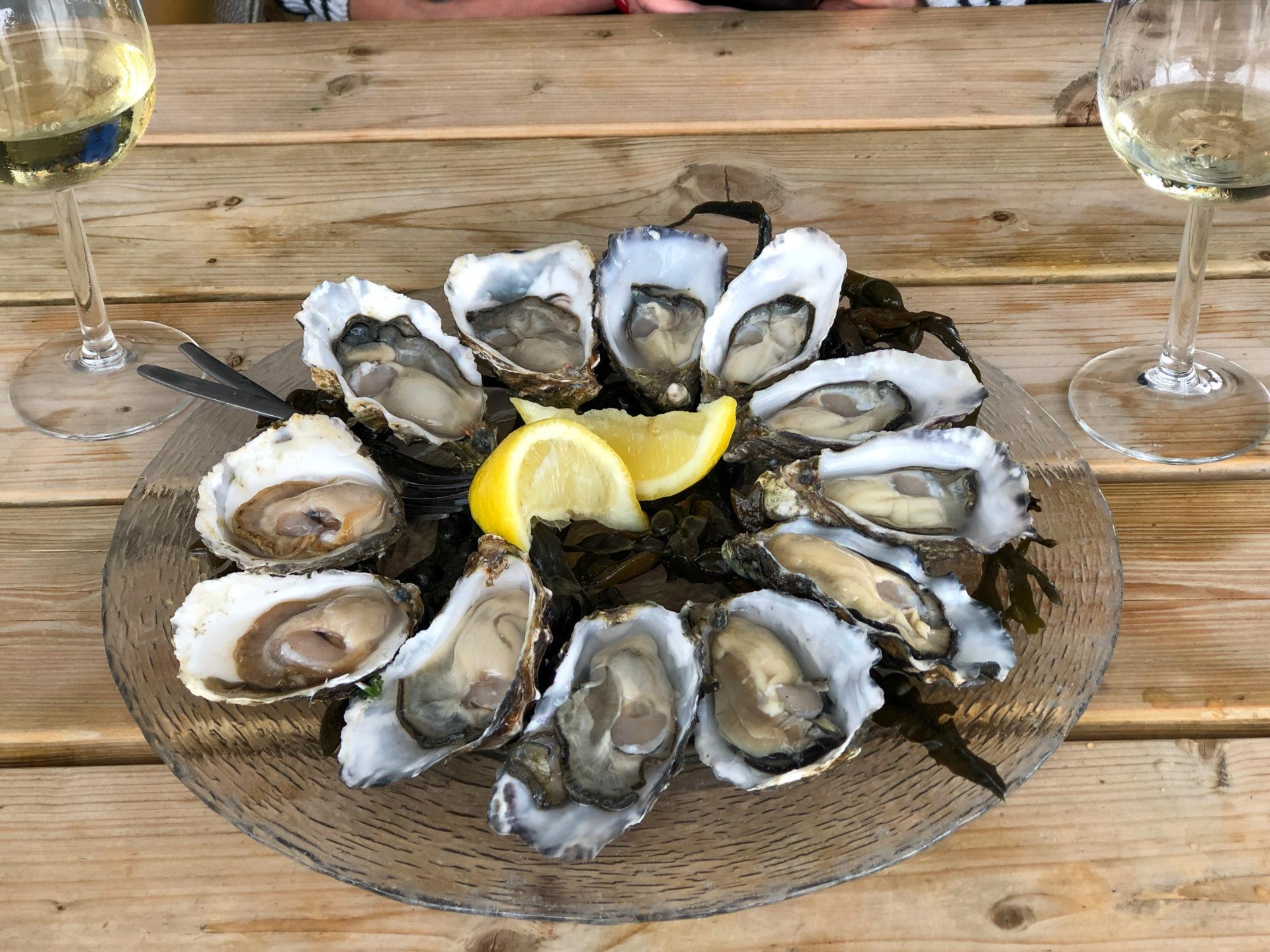 Austernplatte in der Oesterij in Zeeland mit Wein