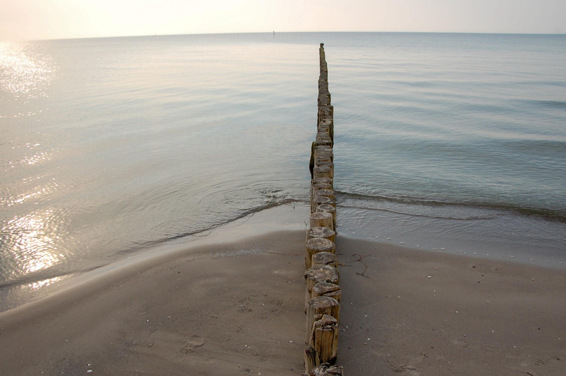 Buhne in der Ostsee auf Hiddensee