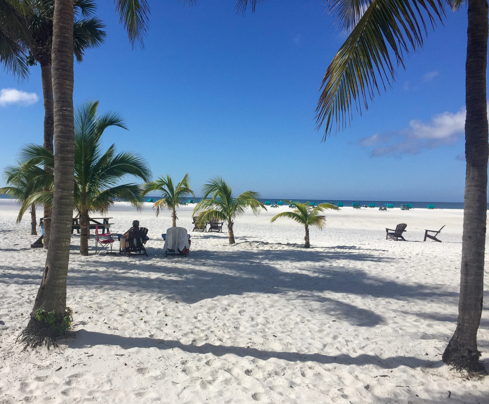 Strand mit Palmen in Fort Myers Beach in Florida