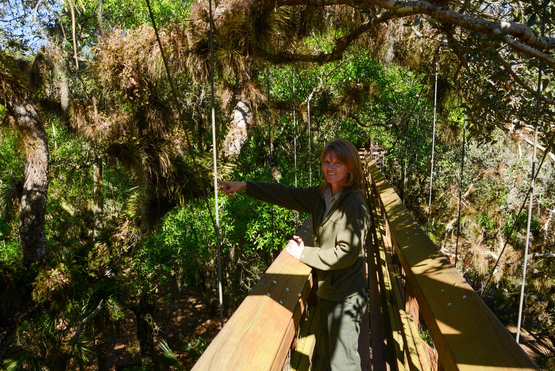 Parkrangerin Dorothy auf dem Canopy Walk am Myakka River