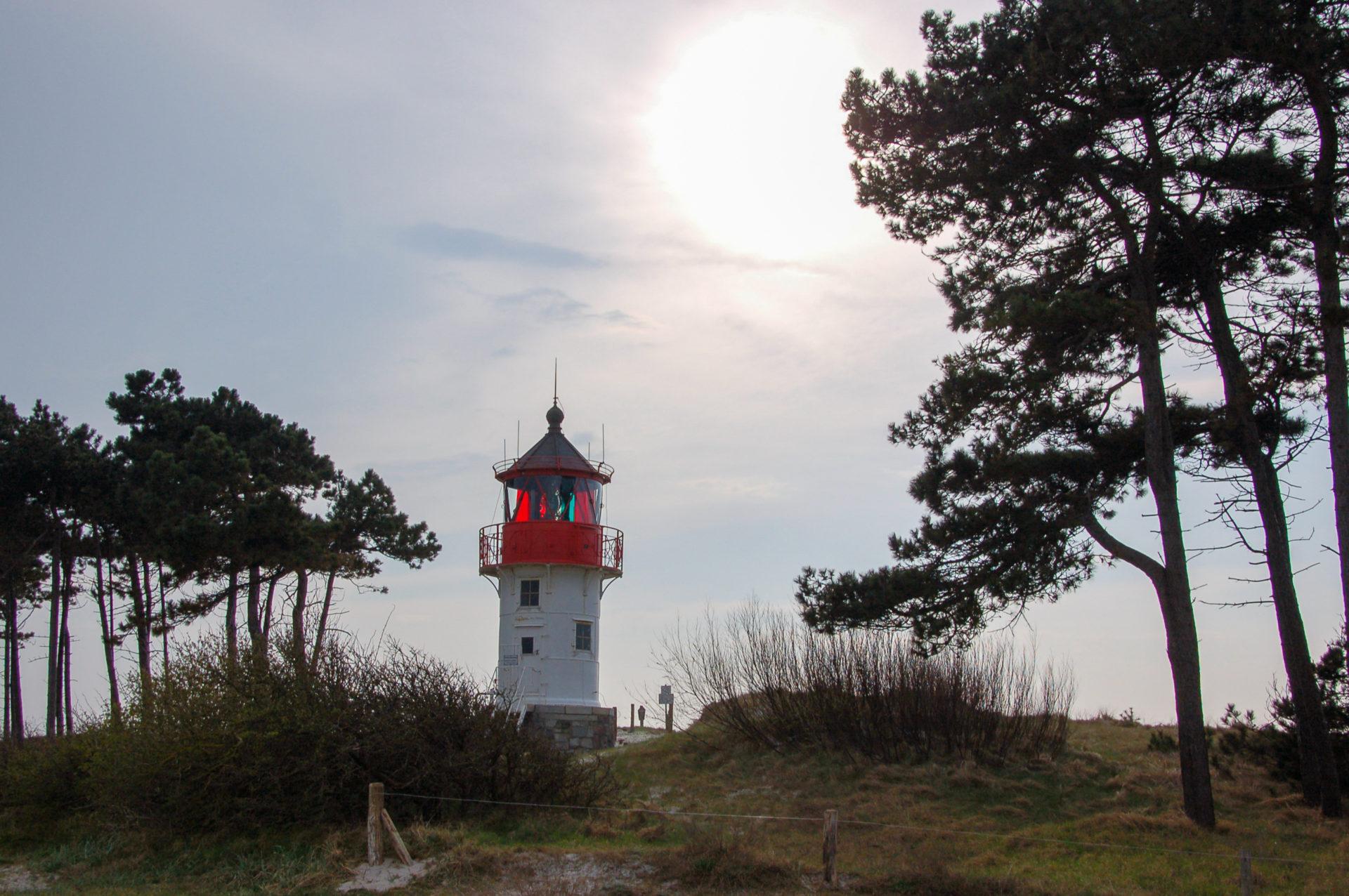 Leuchtturm auf Hiddensee in der Abendsonne