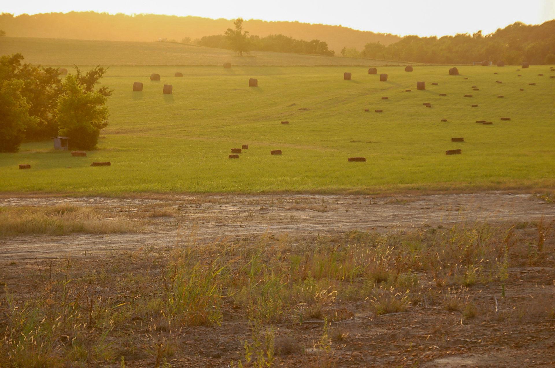 Die grünen Hügel Oklahomas bei der Dude Ranch Meadow Lake an der Route 66