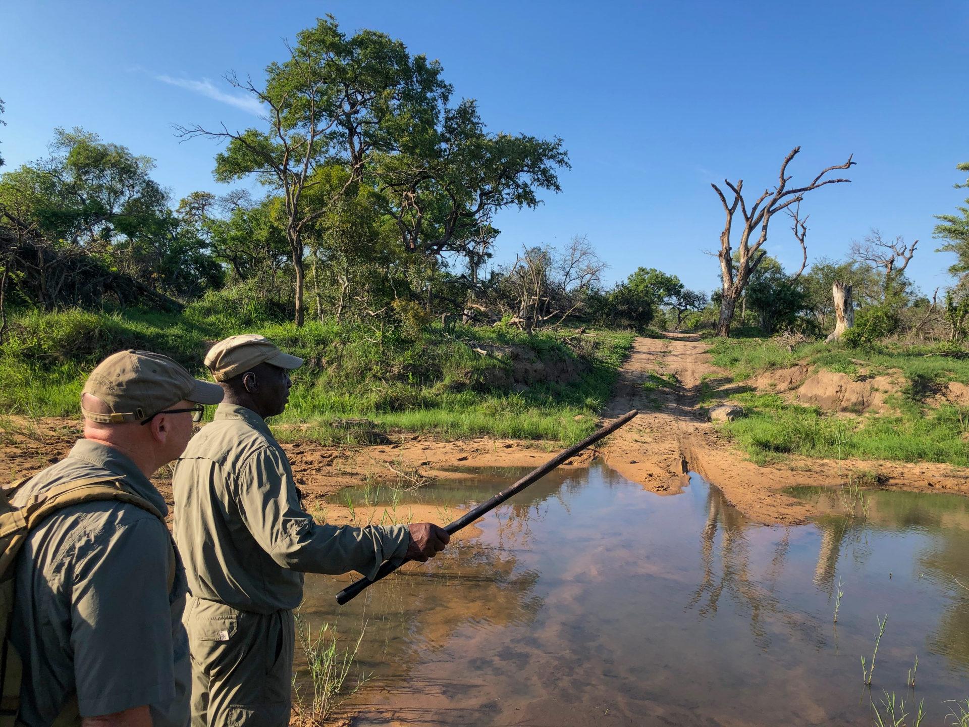 Master Tracker Jonas (l.) und Jonathan bei einer Fußsafari im Greater Kruger Nationalpark