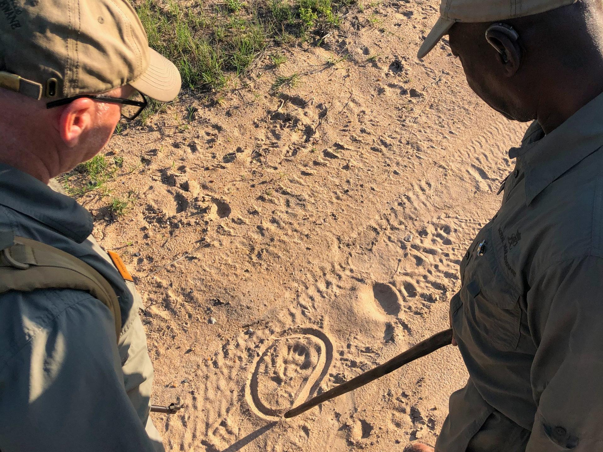 Master Tracker Jonas umkreist eine Tierspur.